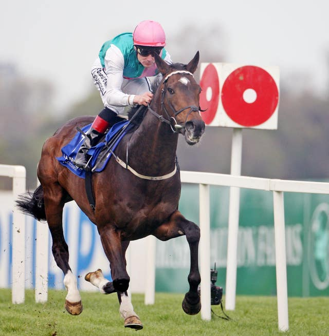 Famous Name was a prolific winner in the hands of Pat Smullen