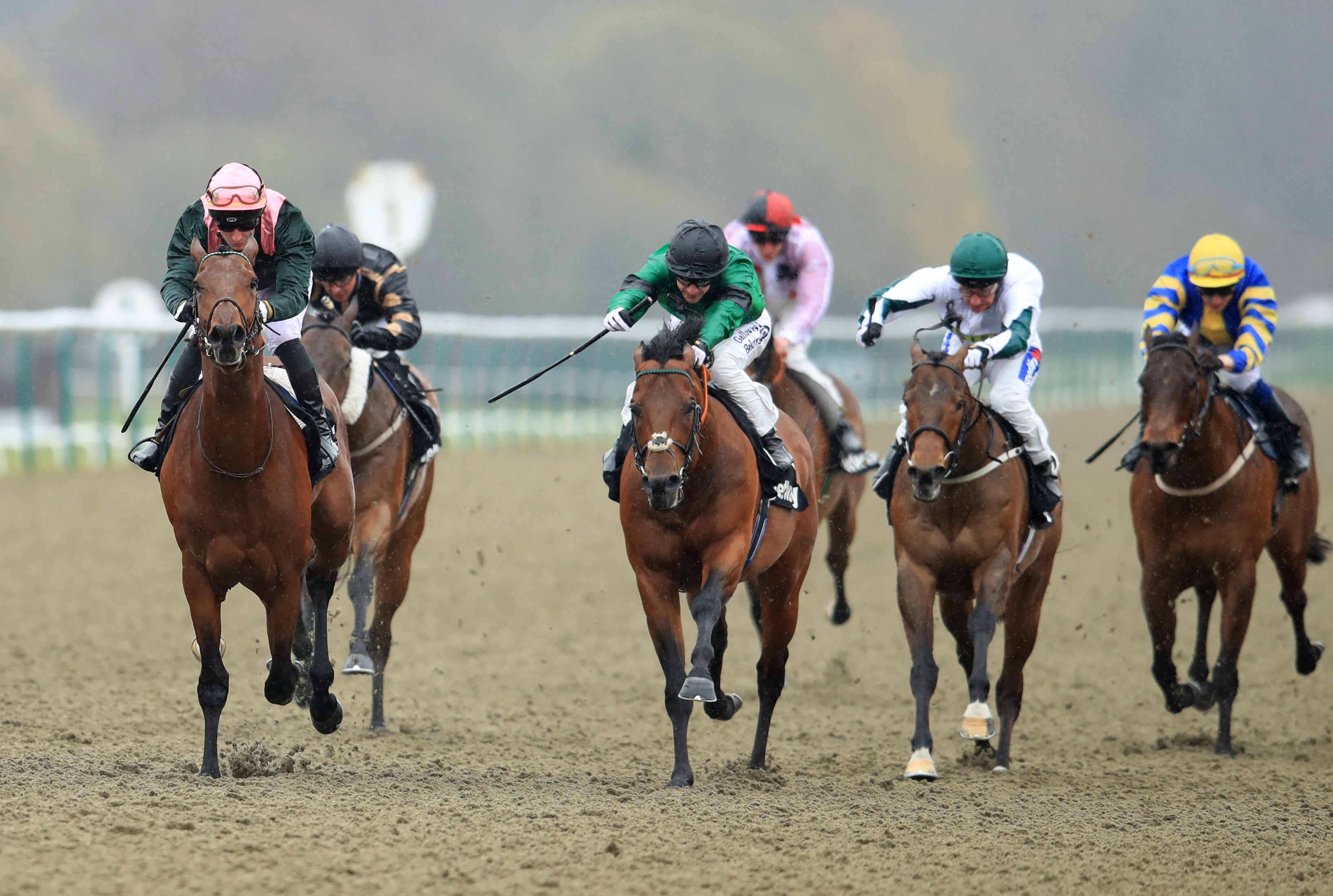 City Light (left) takes the All-Weather Sprint Championship at Lingfield
