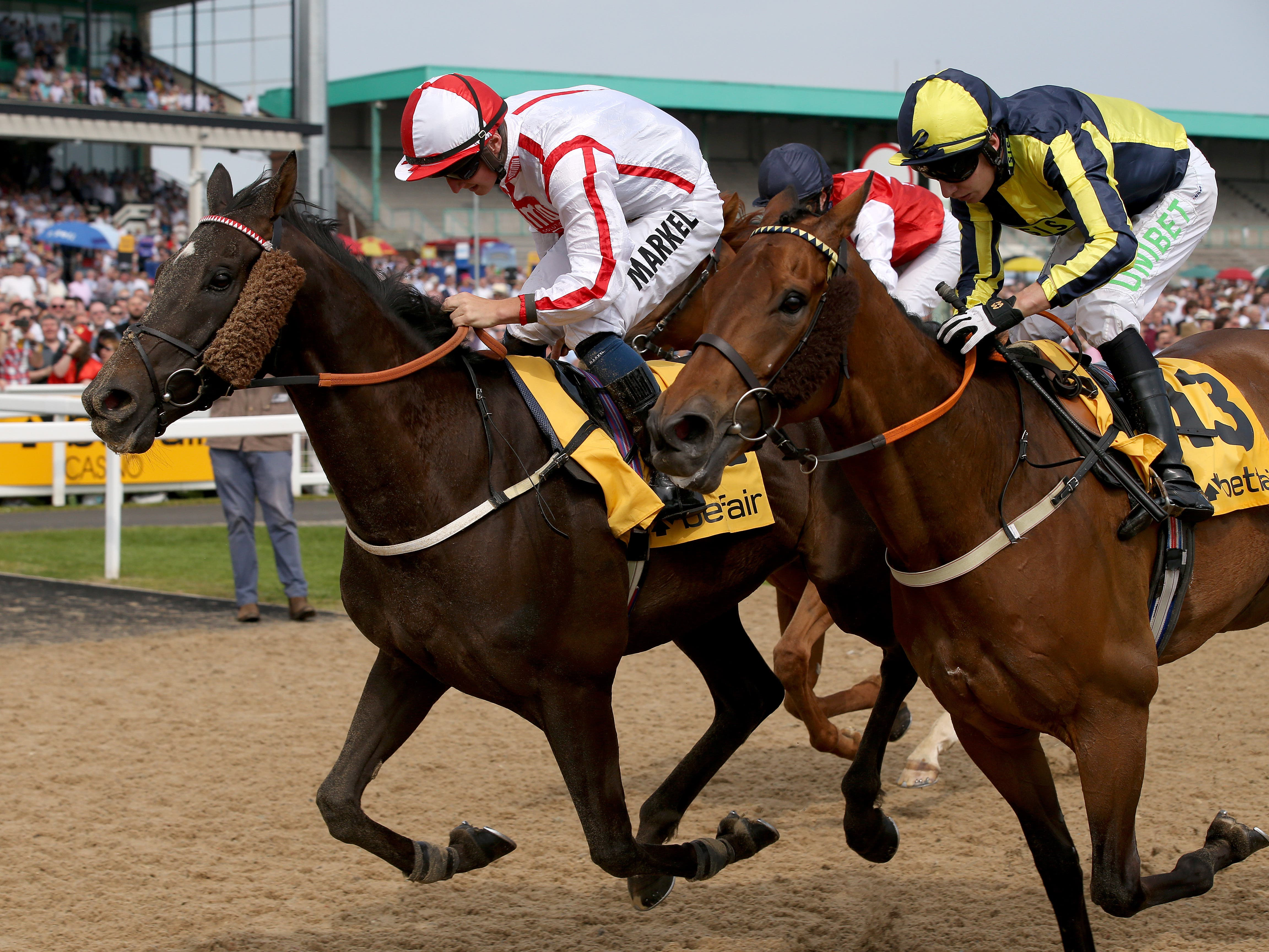 Who Dares Wins (left) just held off Dubawi Fifty in the Northumberland Plate (Clint Hughes/PA)
