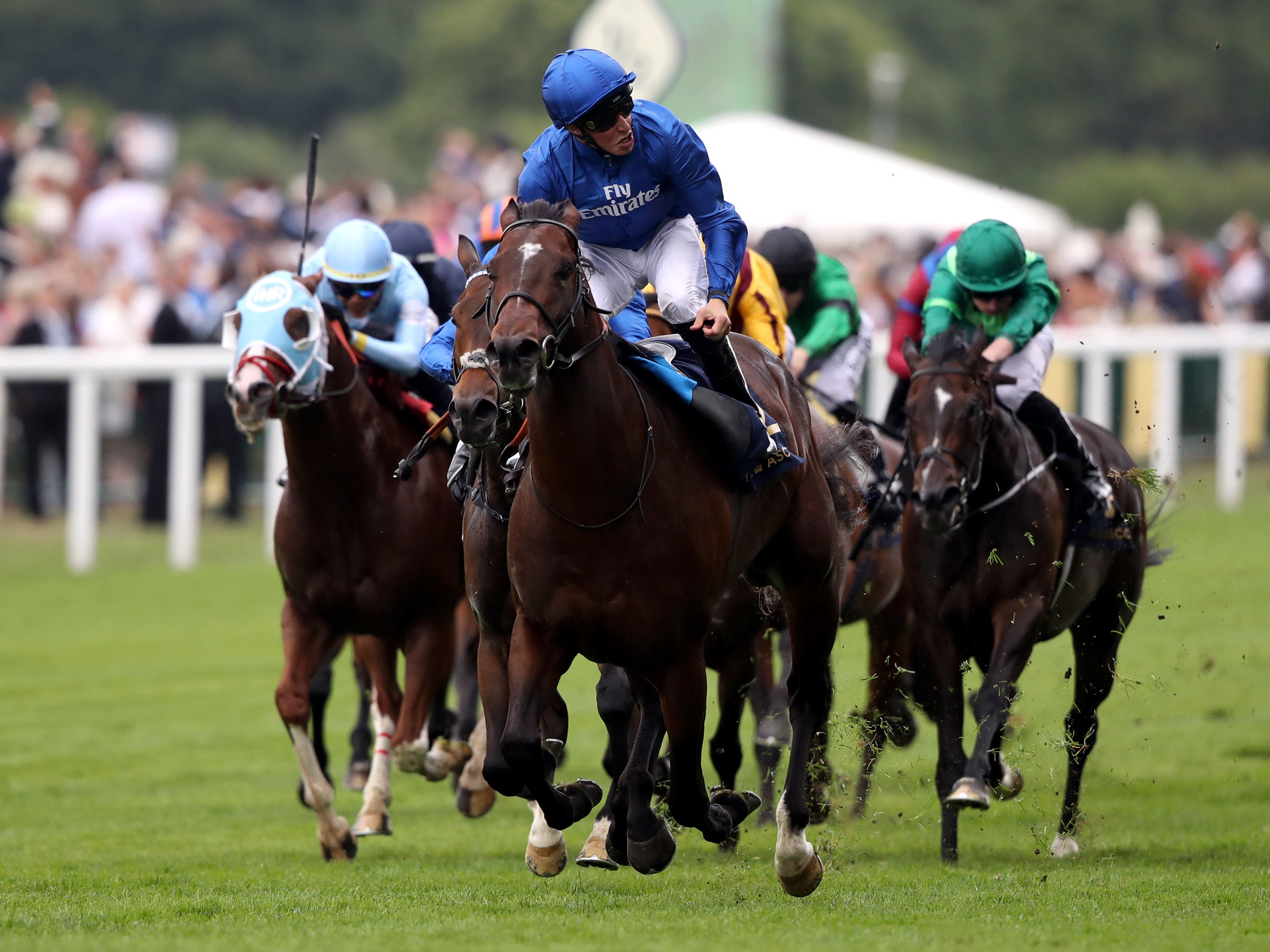 Blue Point comes home clear in last year's King's Stand (John Walton/PA)