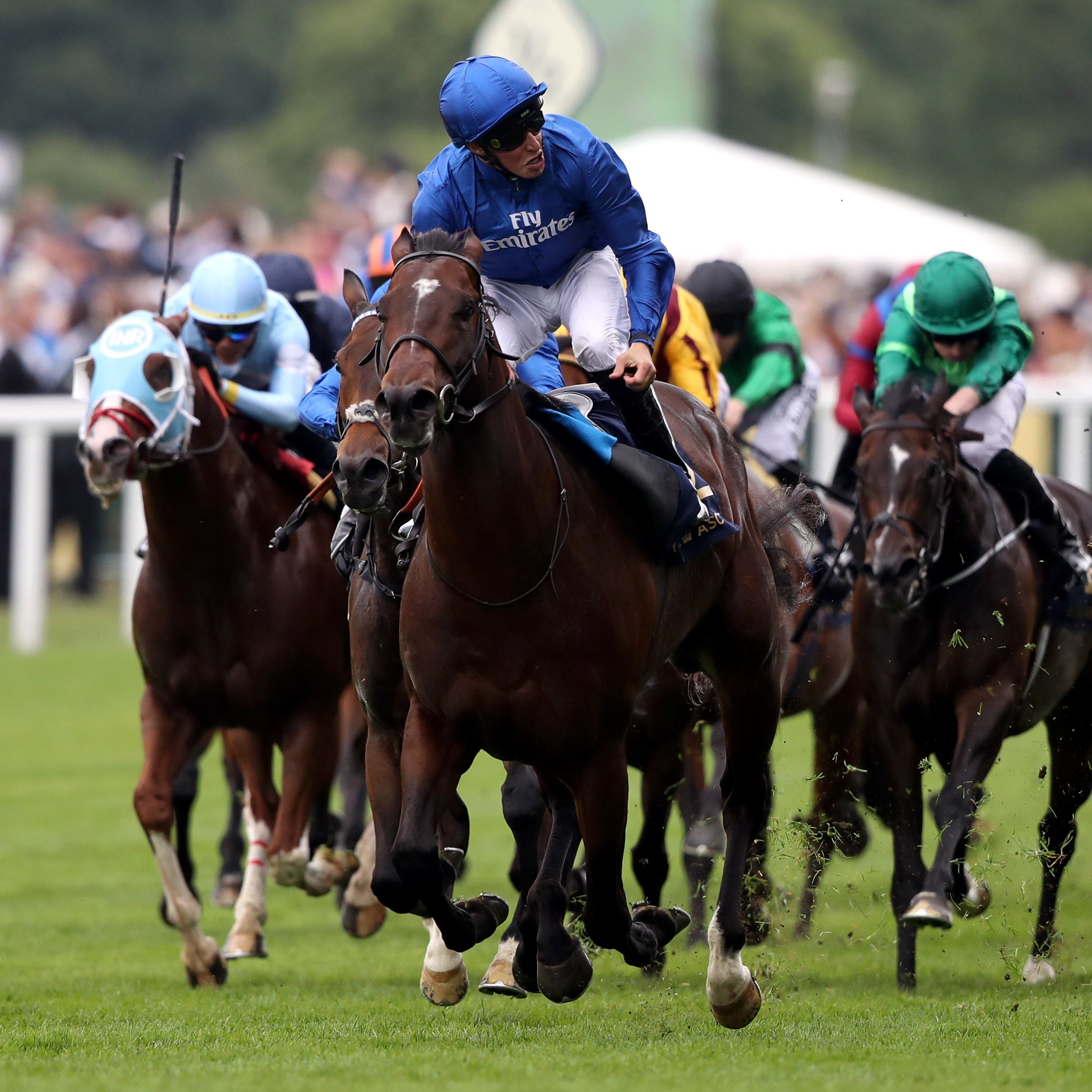 Blue Point comes home clear in last year's King's Stand