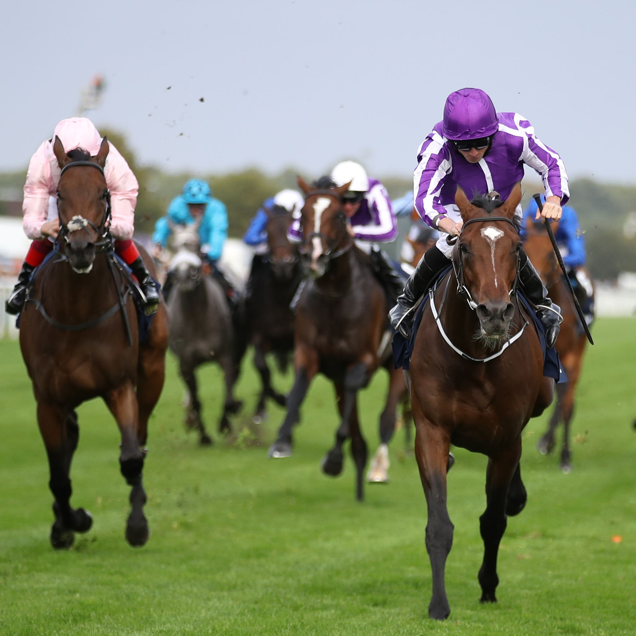 Kew Gardens and Lah Ti Dar are set for a rematch at Epsom