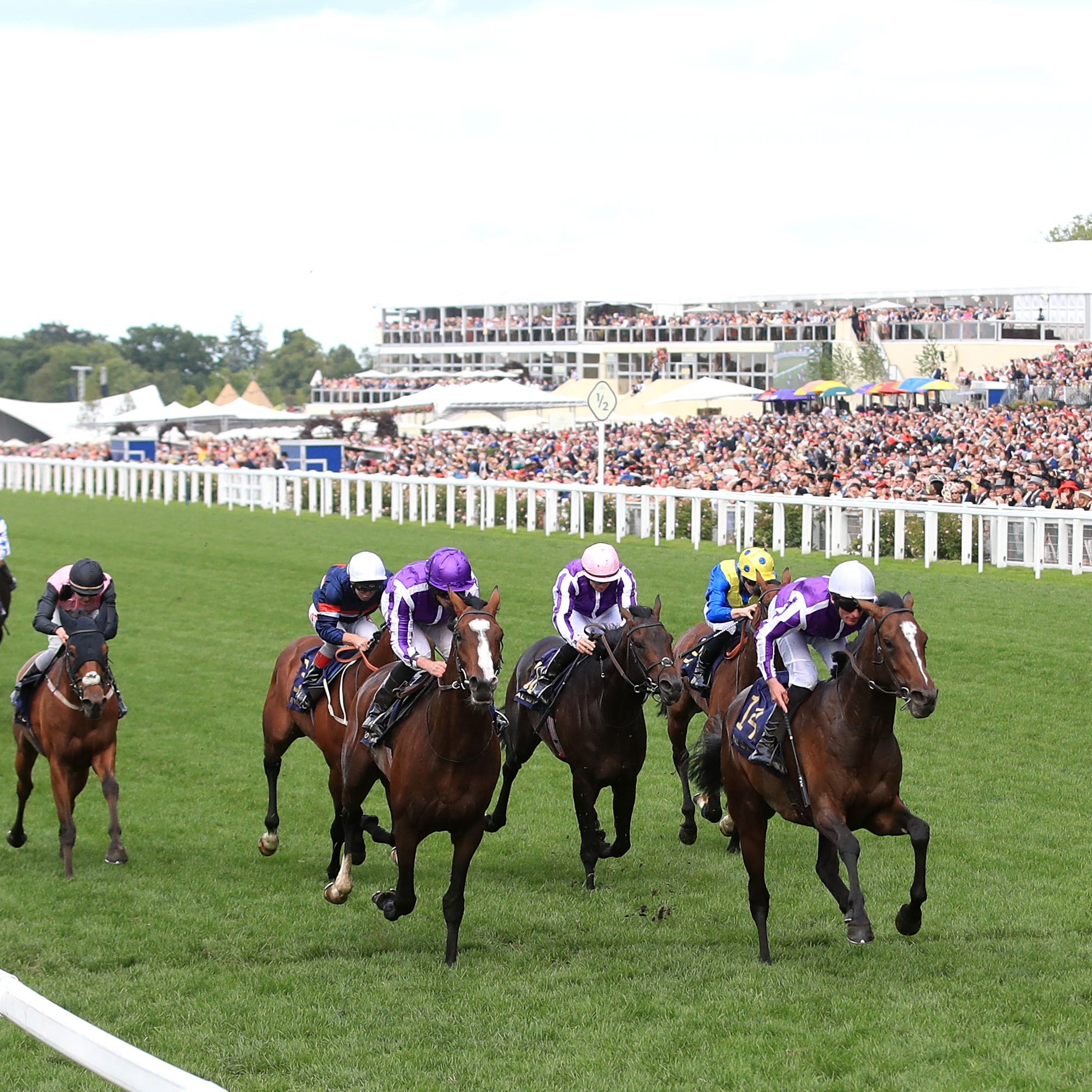 Persian Moon (fifth from right, white cap) ran a fine race at Royal Ascot