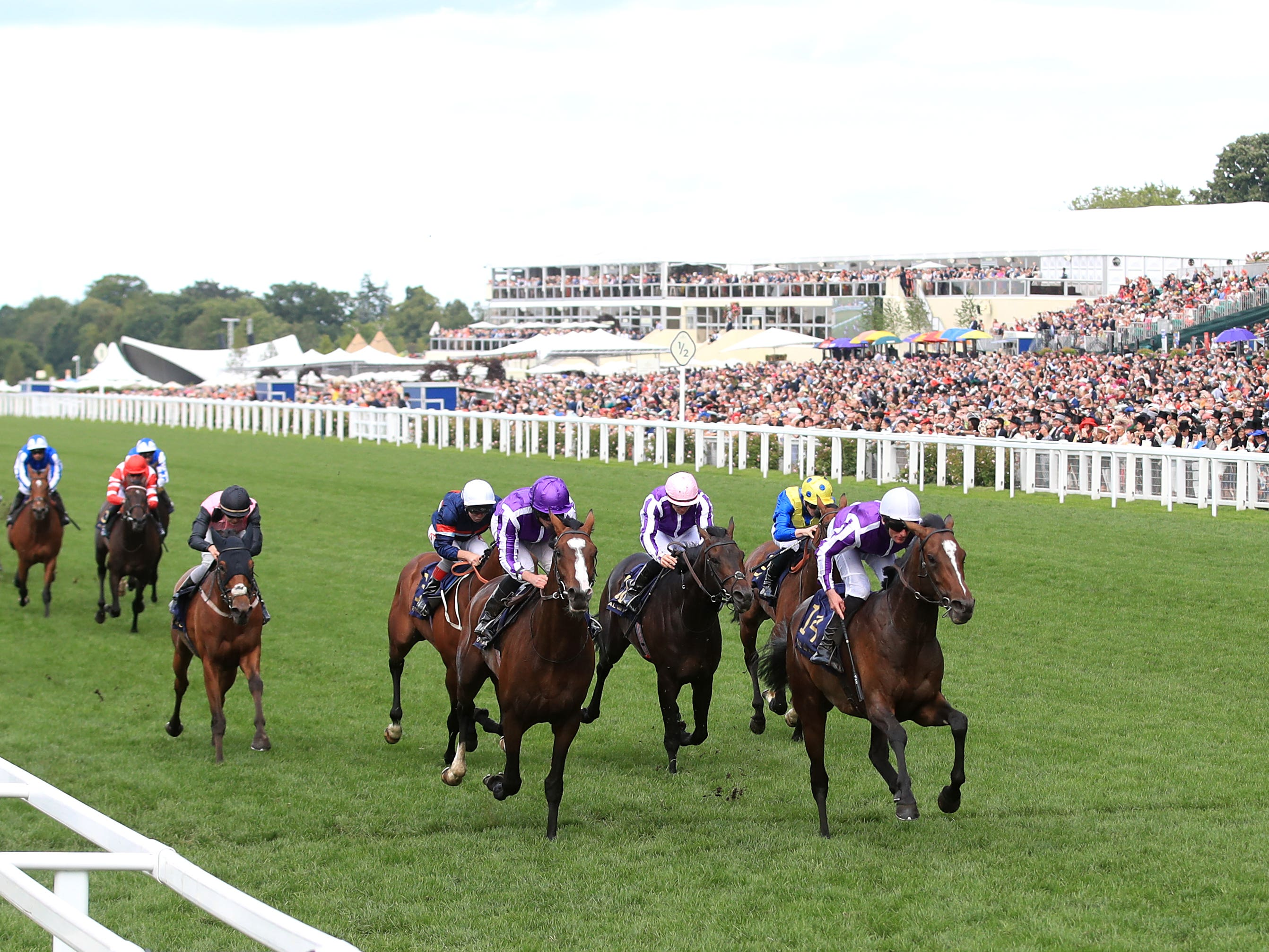 Persian Moon (fifth from right, white cap) ran a fine race at Royal Ascot (Adam Davy/PA)