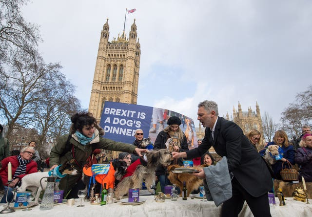 "Dogs are served with food during an anti-Brexit event billed as ""the biggest dog's dinner in history"" (Dominic Lipinski/PA)"