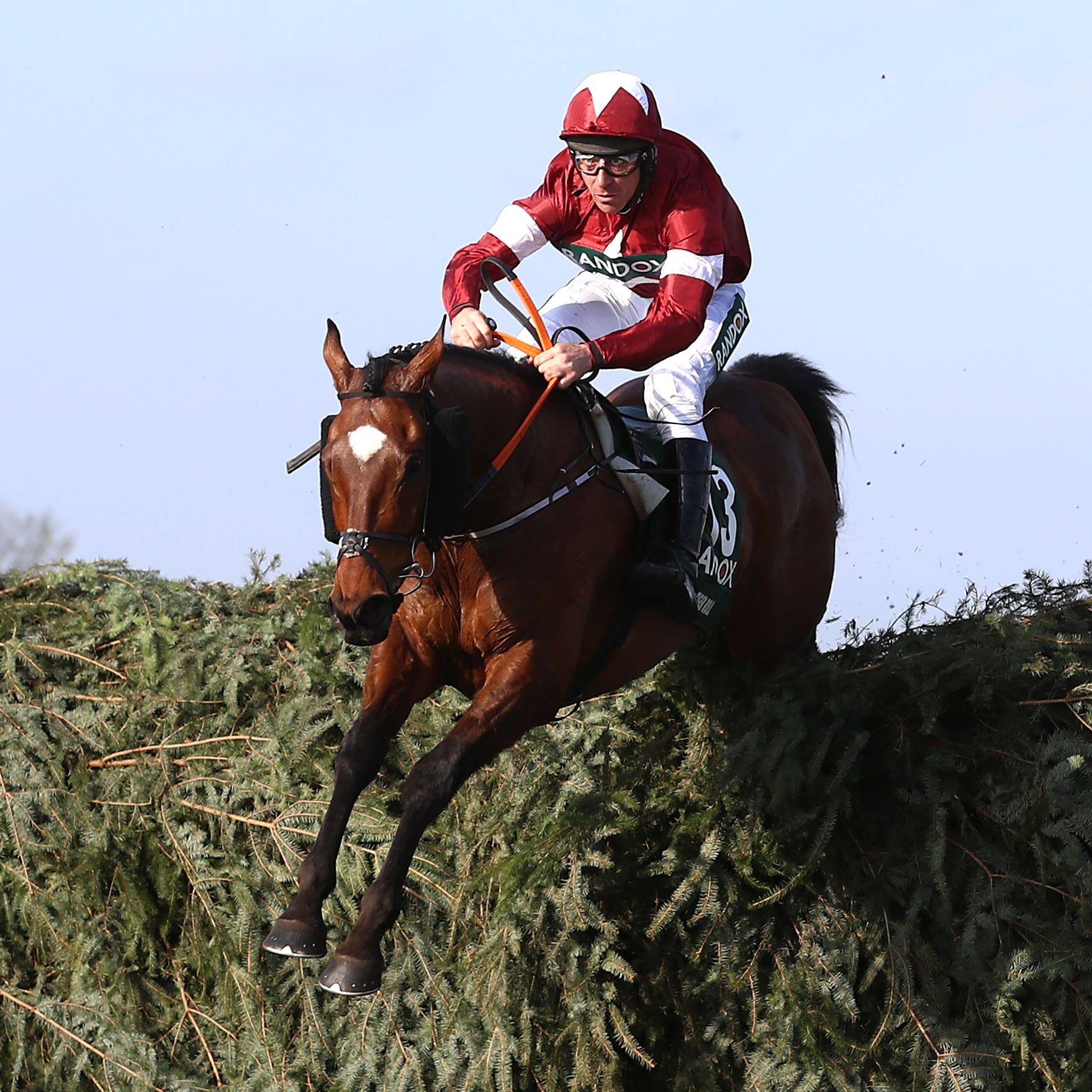 Tiger Roll on his way to winning the Grand National at Aintree