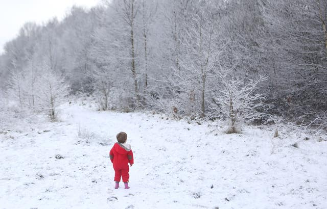 Two-year-old Felix Cox looks at the snowy trees in Hargate Forest in Tunbridge Wells (Philip Toscano/PA)