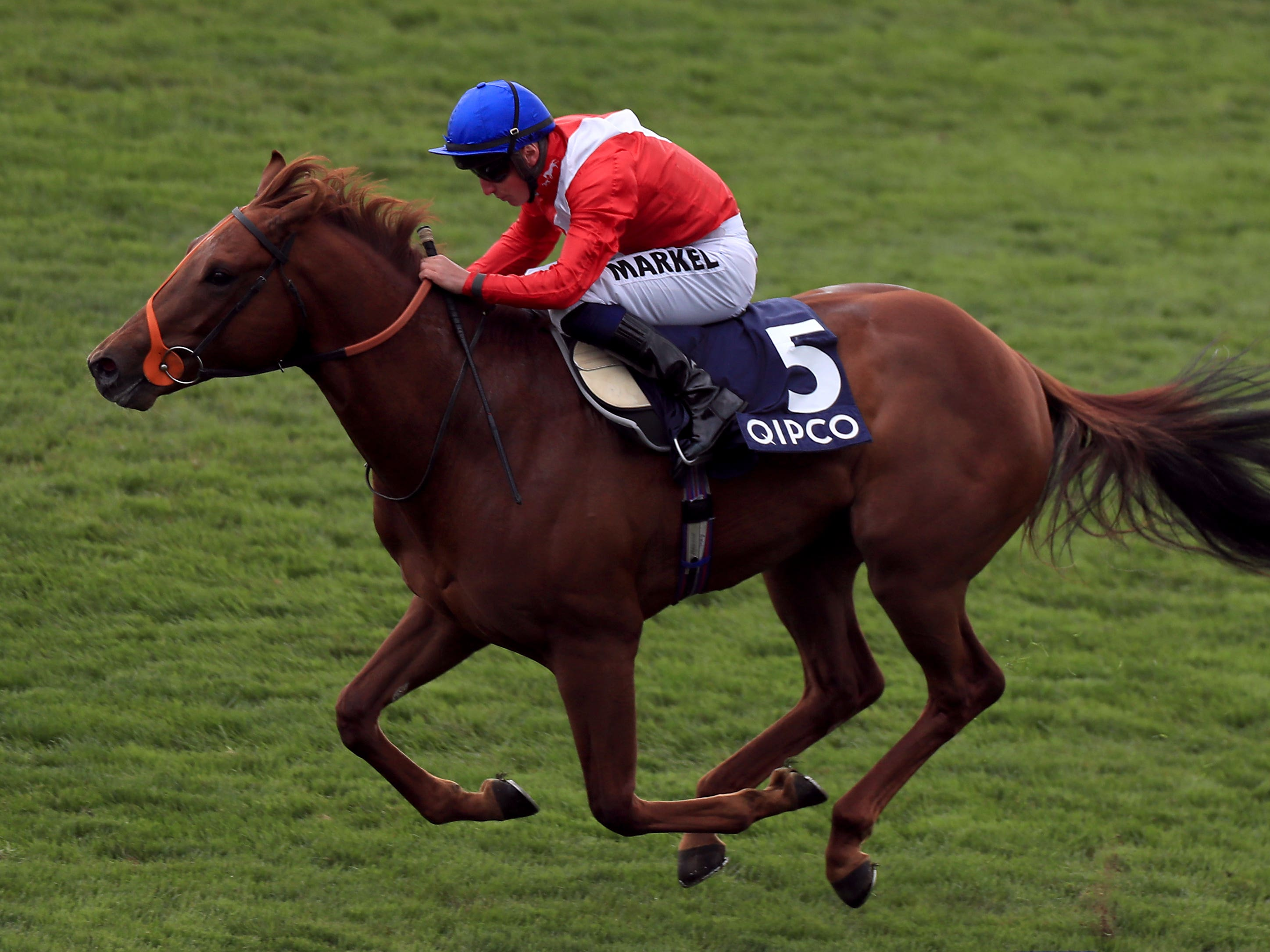 Threat is to be aimed at the Qatar Prix Jean Prat at Deauville next Sunday (Mike Egerton/PA Images)