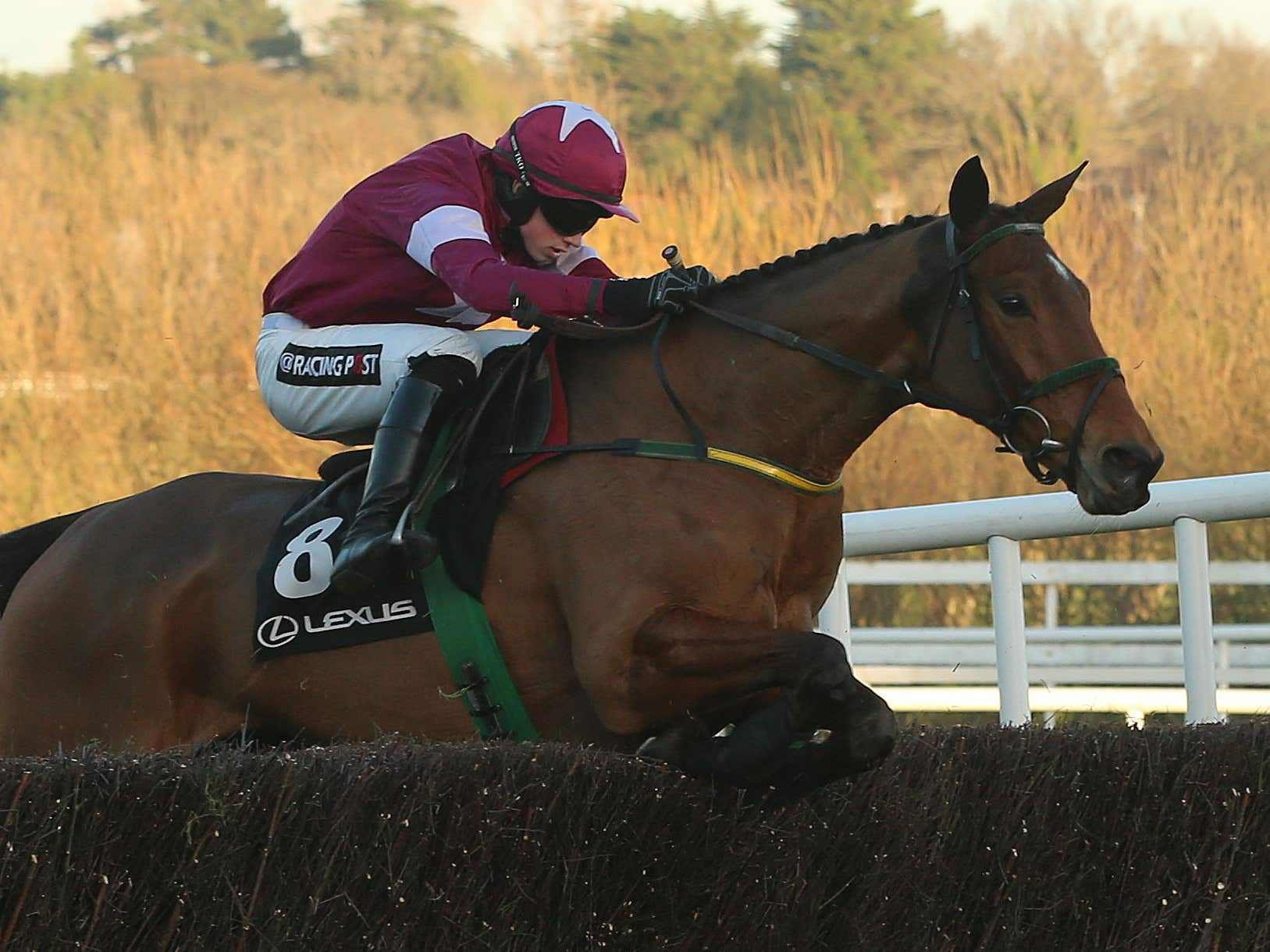 Road to Riches on his way to winning the Lexus Chase at Leopardstown (Niall Carson/PA)