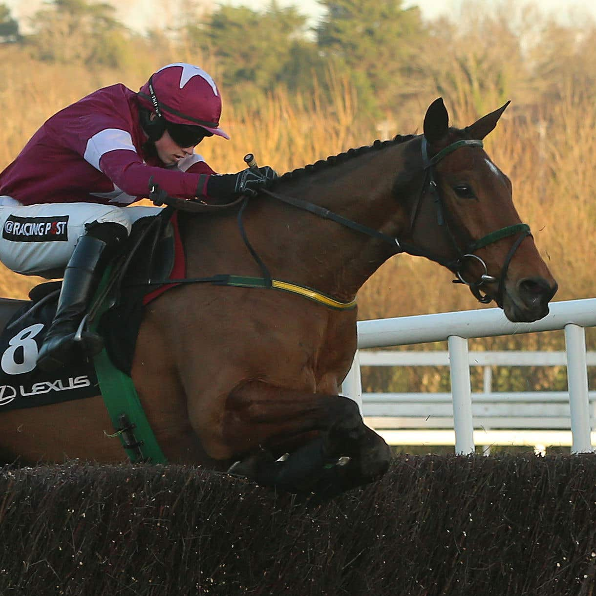 Road to Riches on his way to winning the Lexus Chase at Leopardstown
