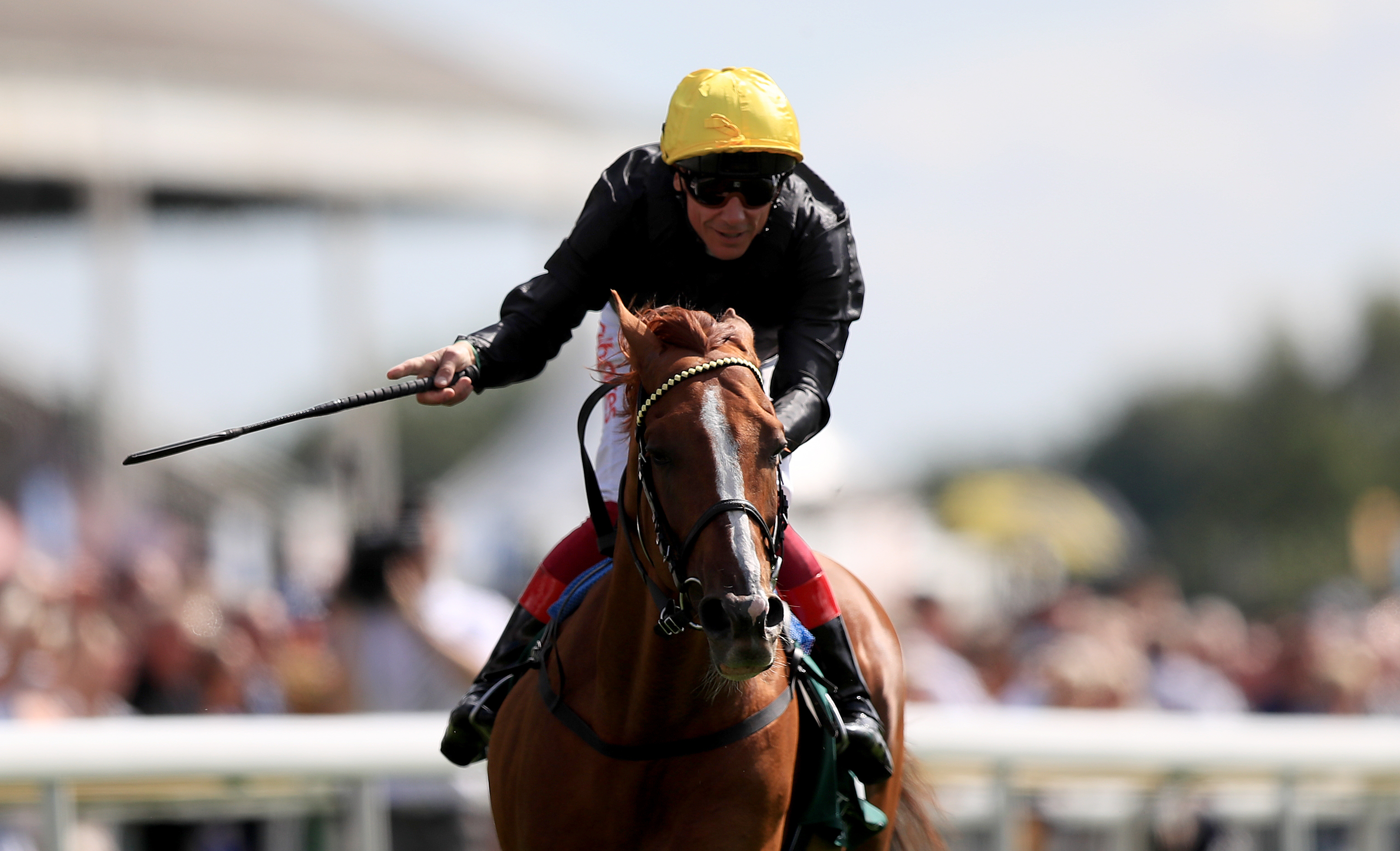 The dream team of Stradivarius and Frankie Dettori win the Weatherbys Hamilton Lonsdale Cup