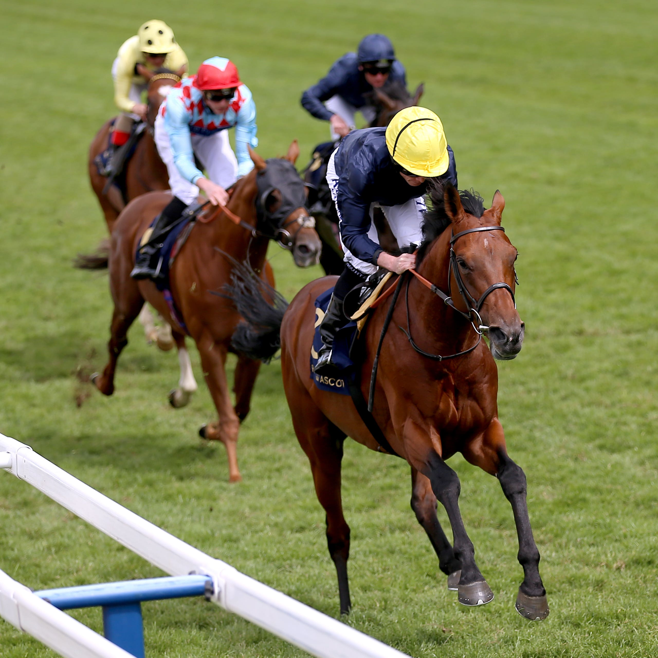 Crystal Ocean on his way to winning the Hardwicke Stakes at Royal Ascot