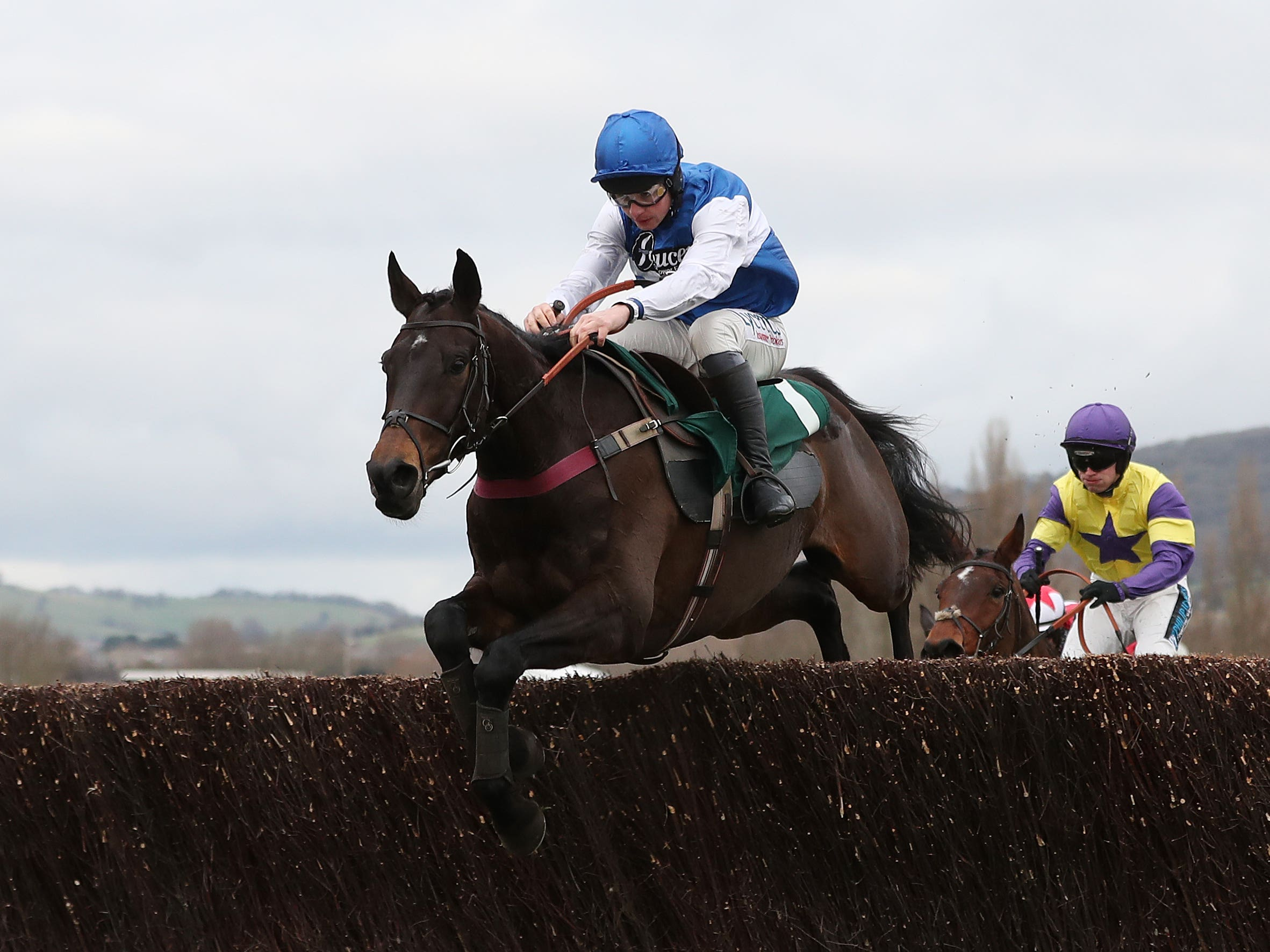 Aso heads the Peterborough Chase entries (David Davies/PA)