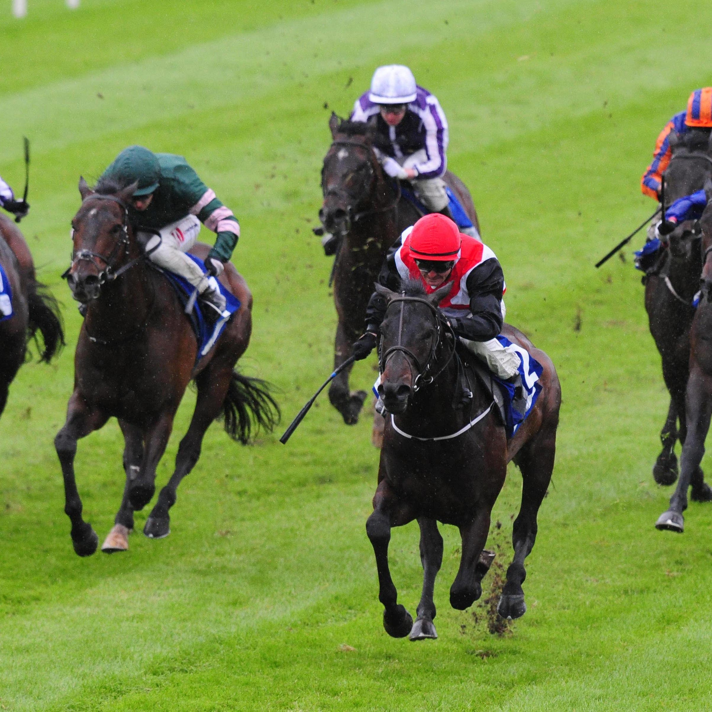 Brother Bear (red cap) in winning action (PA)
