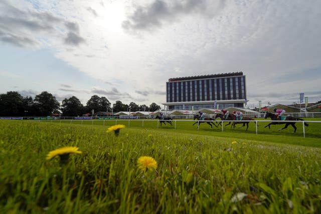 The runners turn into the back straight in the Doncaster Cup