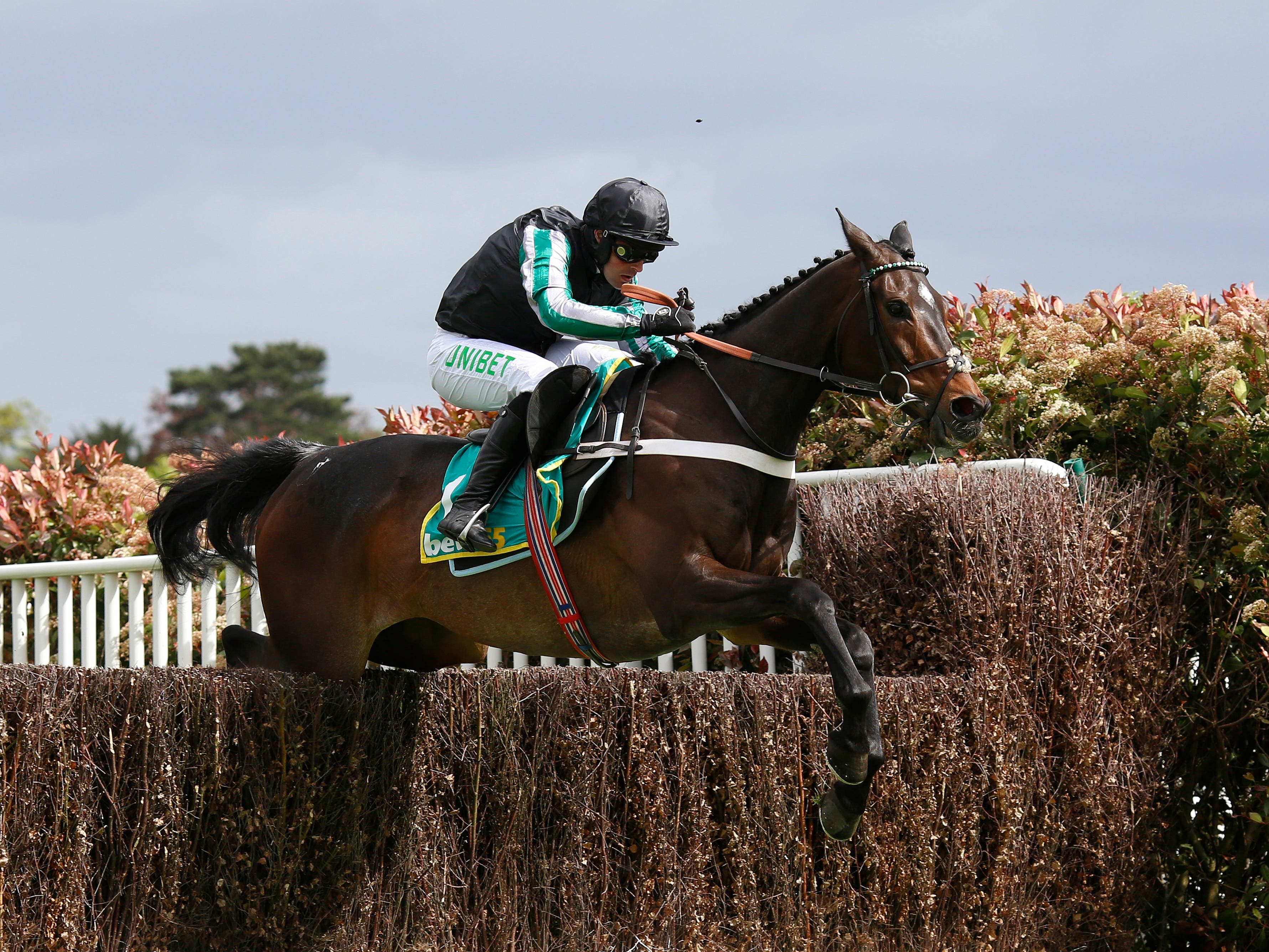 Altior looks set to sidestep the King George VI Chase (Julian Herbert/PA)