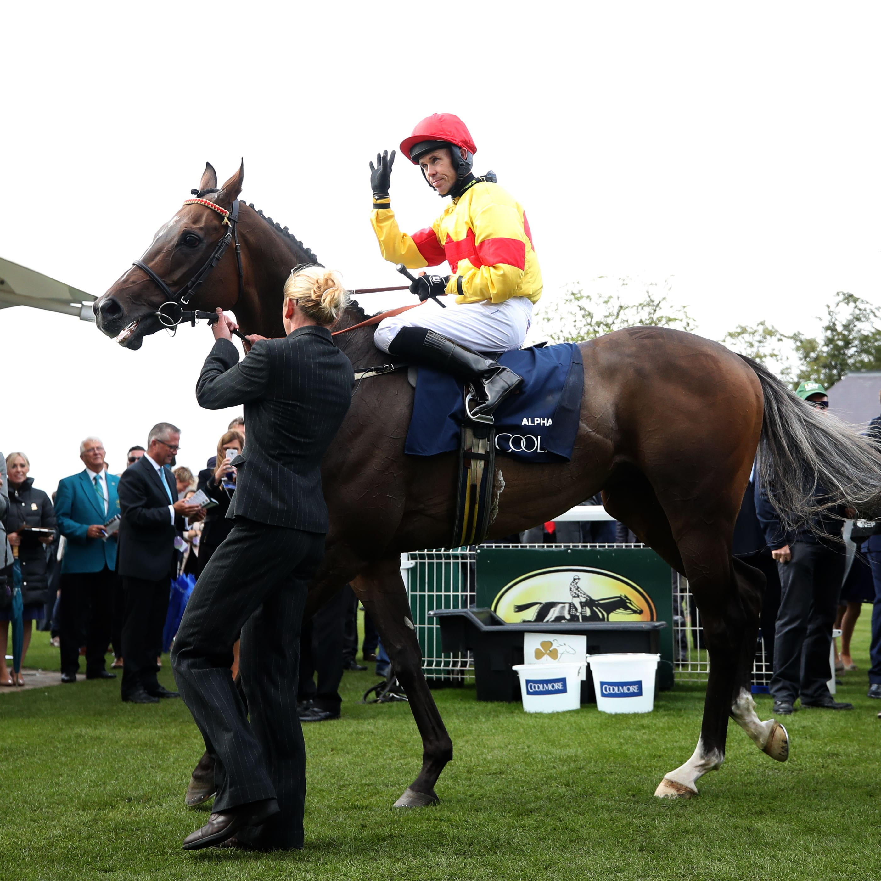 Alpha Delphini returns to the winner's enclosure after the Nunthorpe Stakes at York