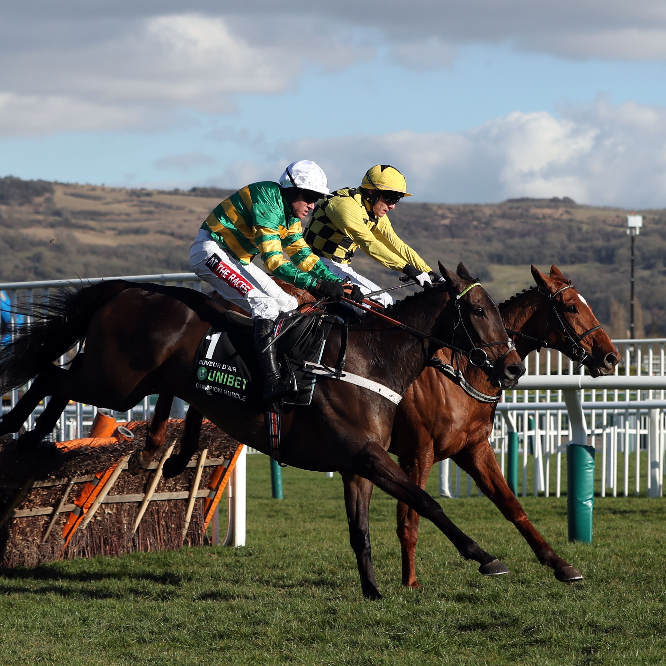 Buveur D'Air (front) on his way to winning the Unibet Champion Hurdle at Cheltenham last year