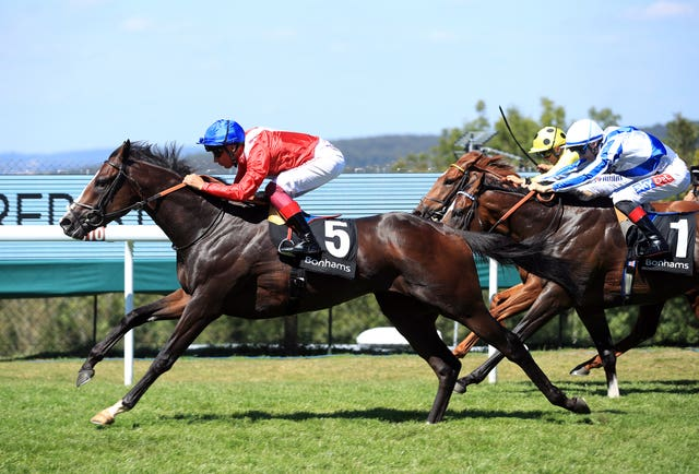 Regal Reality steps up in trip at Sandown