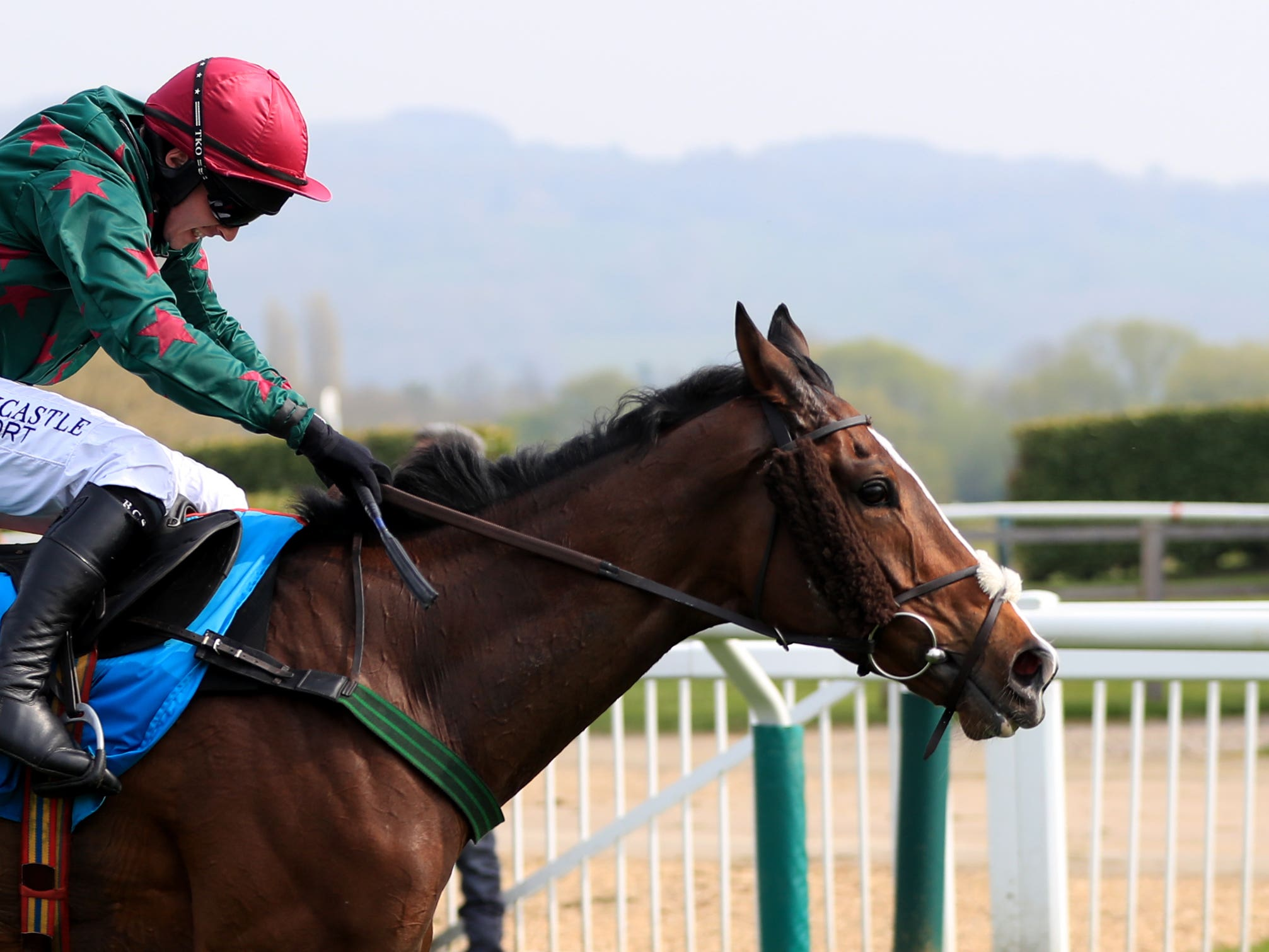 Mister Whitaker is expected to return to winning ways next season (Simon Cooper/PA Images)