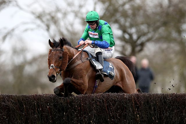 Truckers Lodge will be campaigned with the Randox Health Grand National in mind (Tim Goode/PA)
