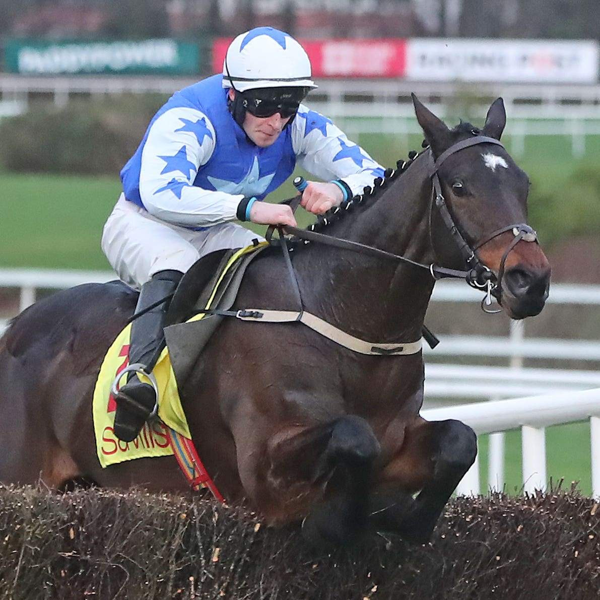 Kemboy on his way to winning the Savills Chase at Leopardstown