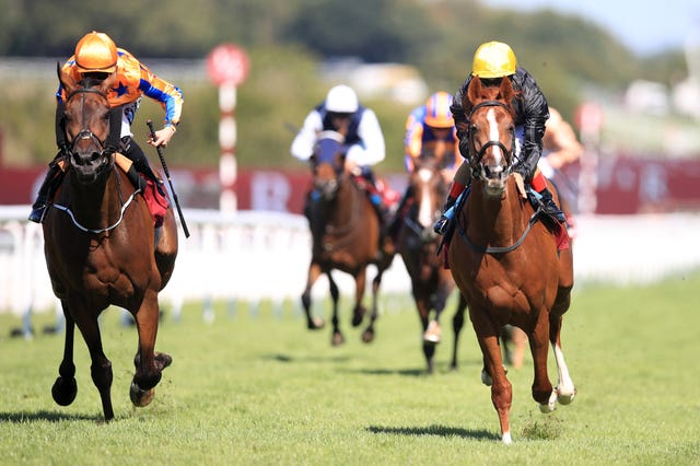 Stradivarius will bid for a record-equalling third success in the Qatar Goodwood Cup (Adam Davy/PA Images)