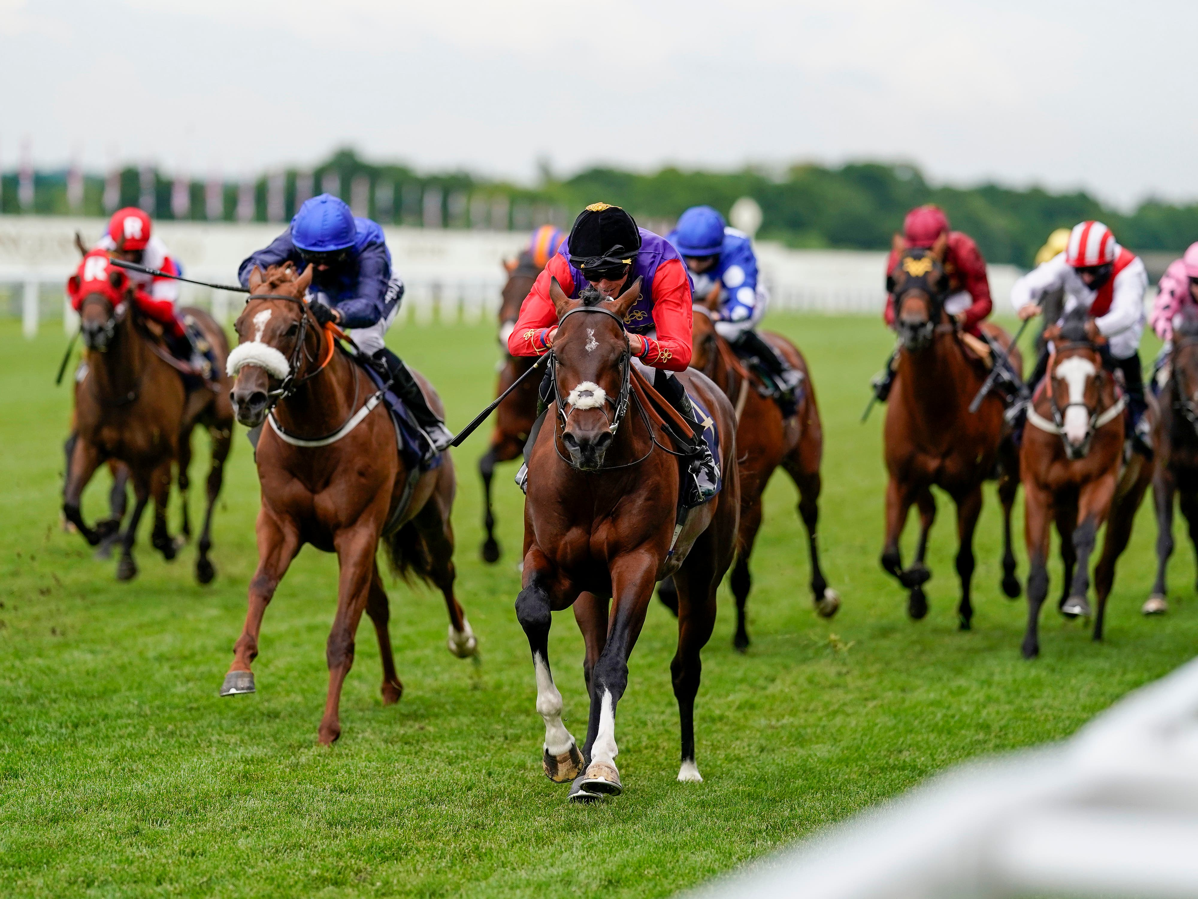 Muker (left) was third in the Windsor Castle Stakes at Royal Ascot (PA)