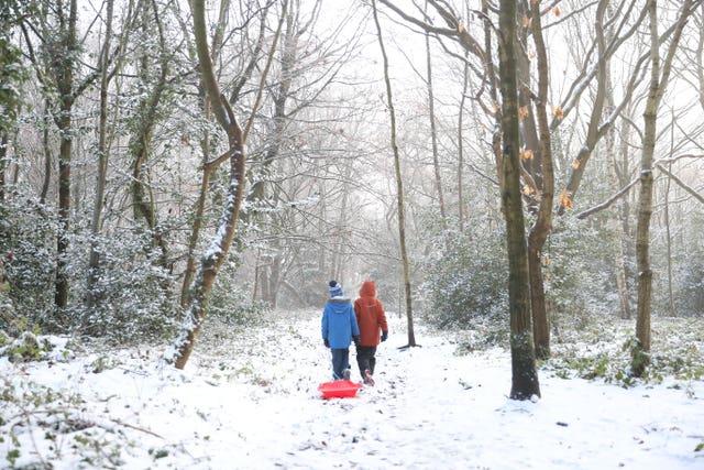 Two children drag a sledge through woods