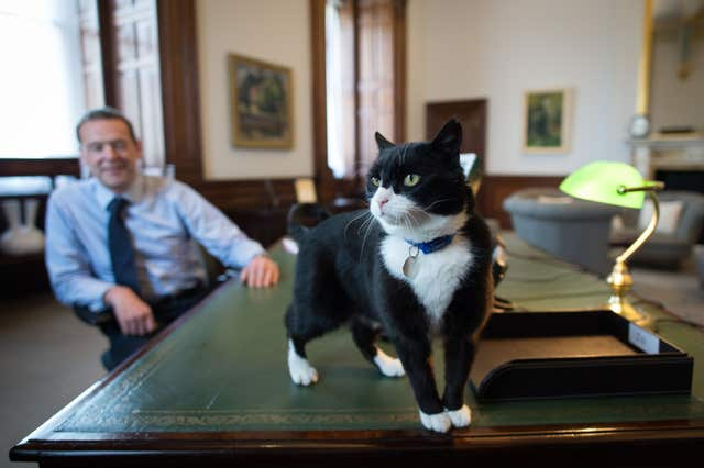 Chief Mouser at Foreign Office