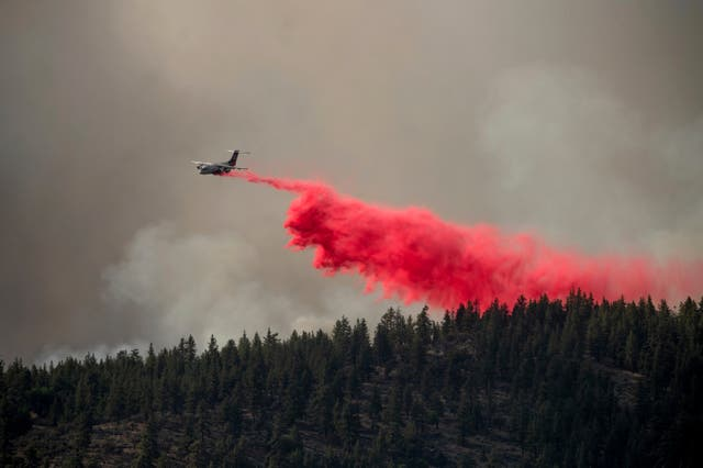 Forest fires in California