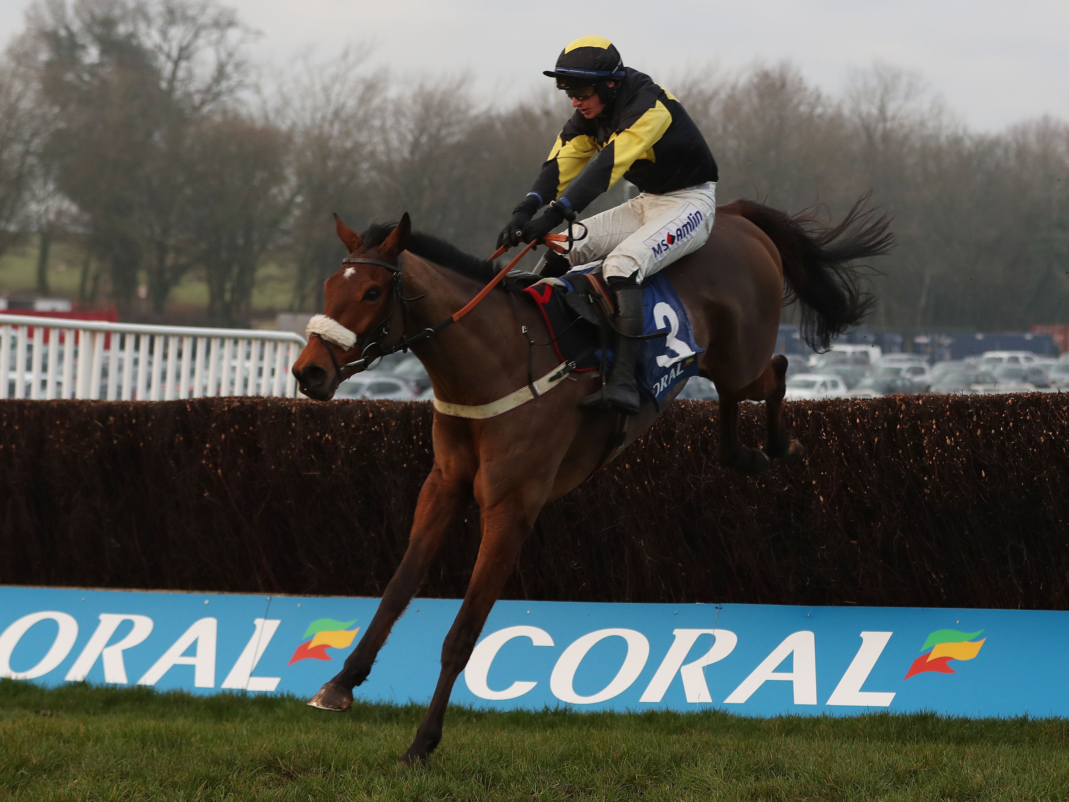 Elegant Escape on his way to winning the Welsh National (David Davies/PA)