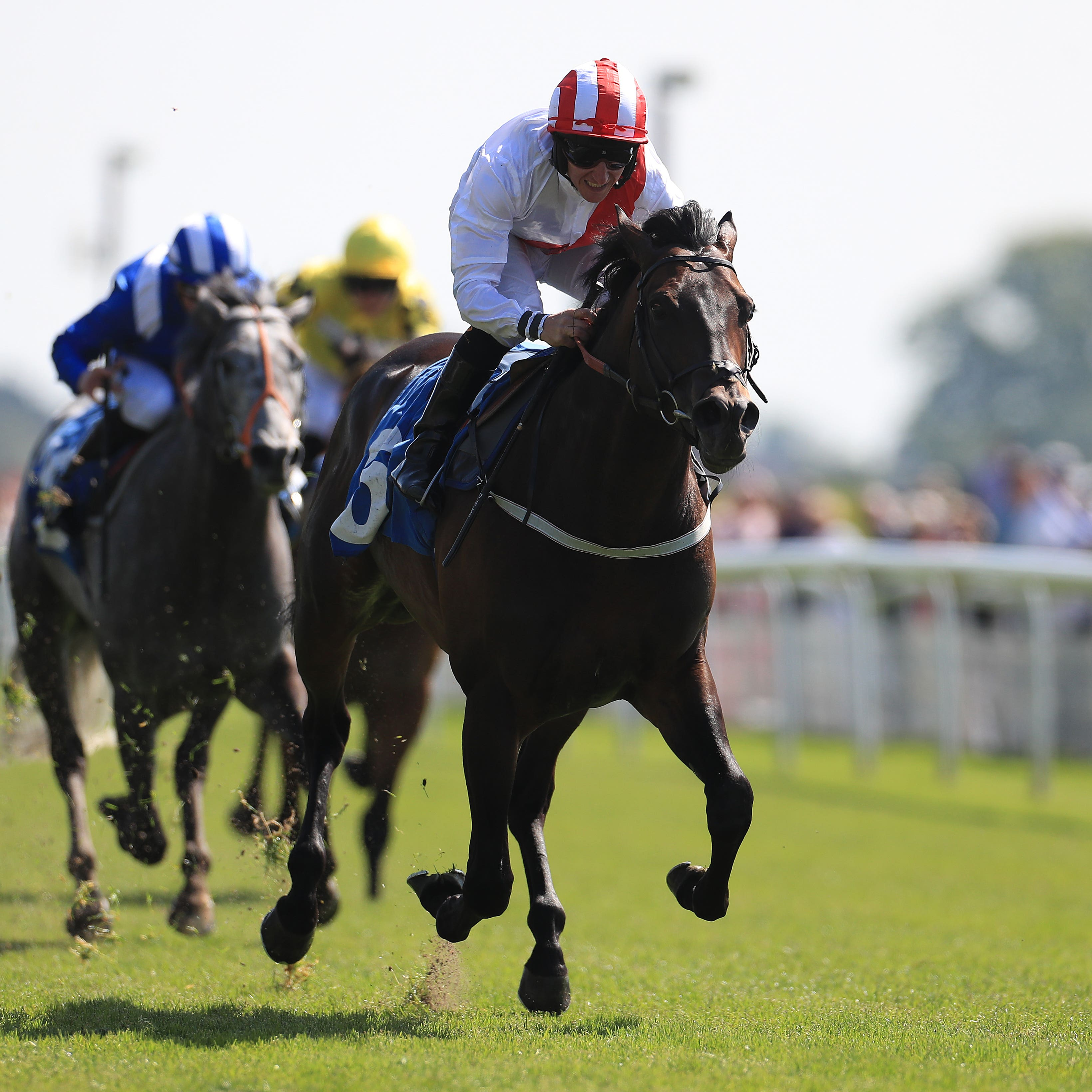 Invincible Army impressed with a clear-cut victory at York