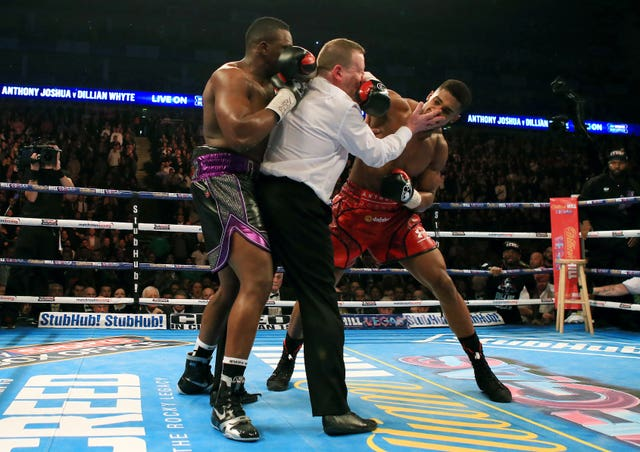 Anthony Joshua beat Dillian Whyte in 2015