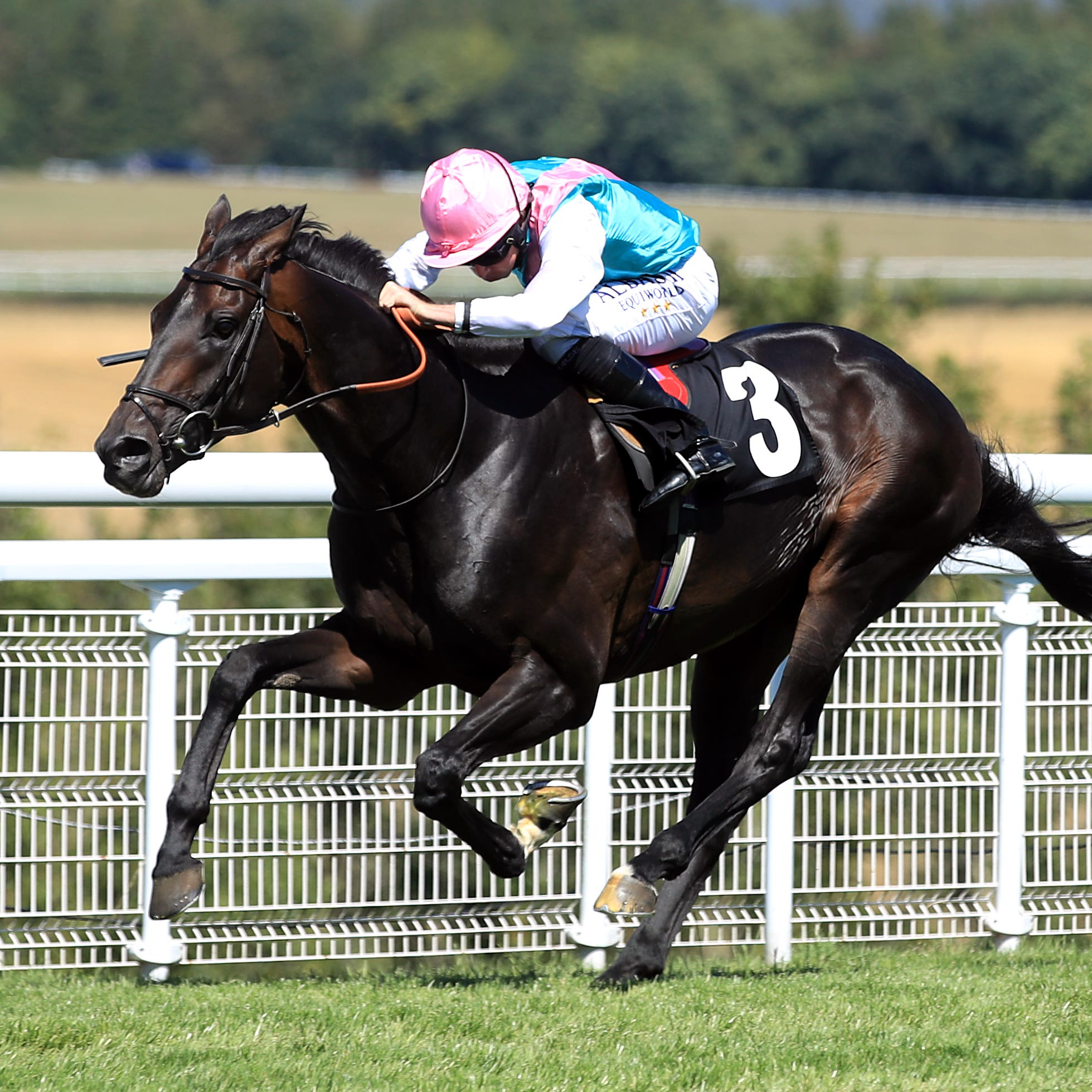 Mirage Dancer comes home to win the Glorious Stakes at Goodwood