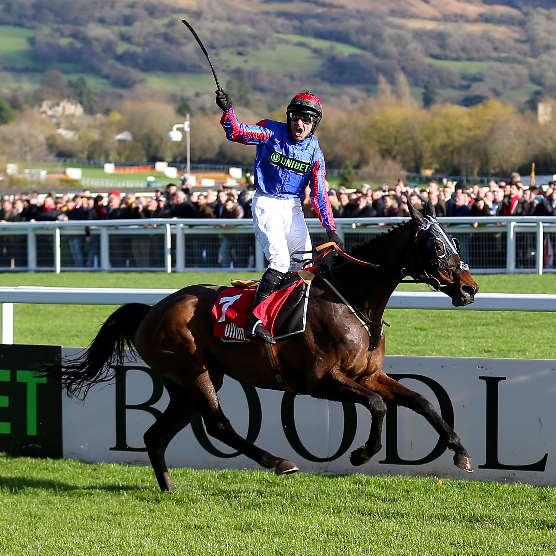 Jerry McGrath celebrates victory aboard Beware The Bear at Cheltenham