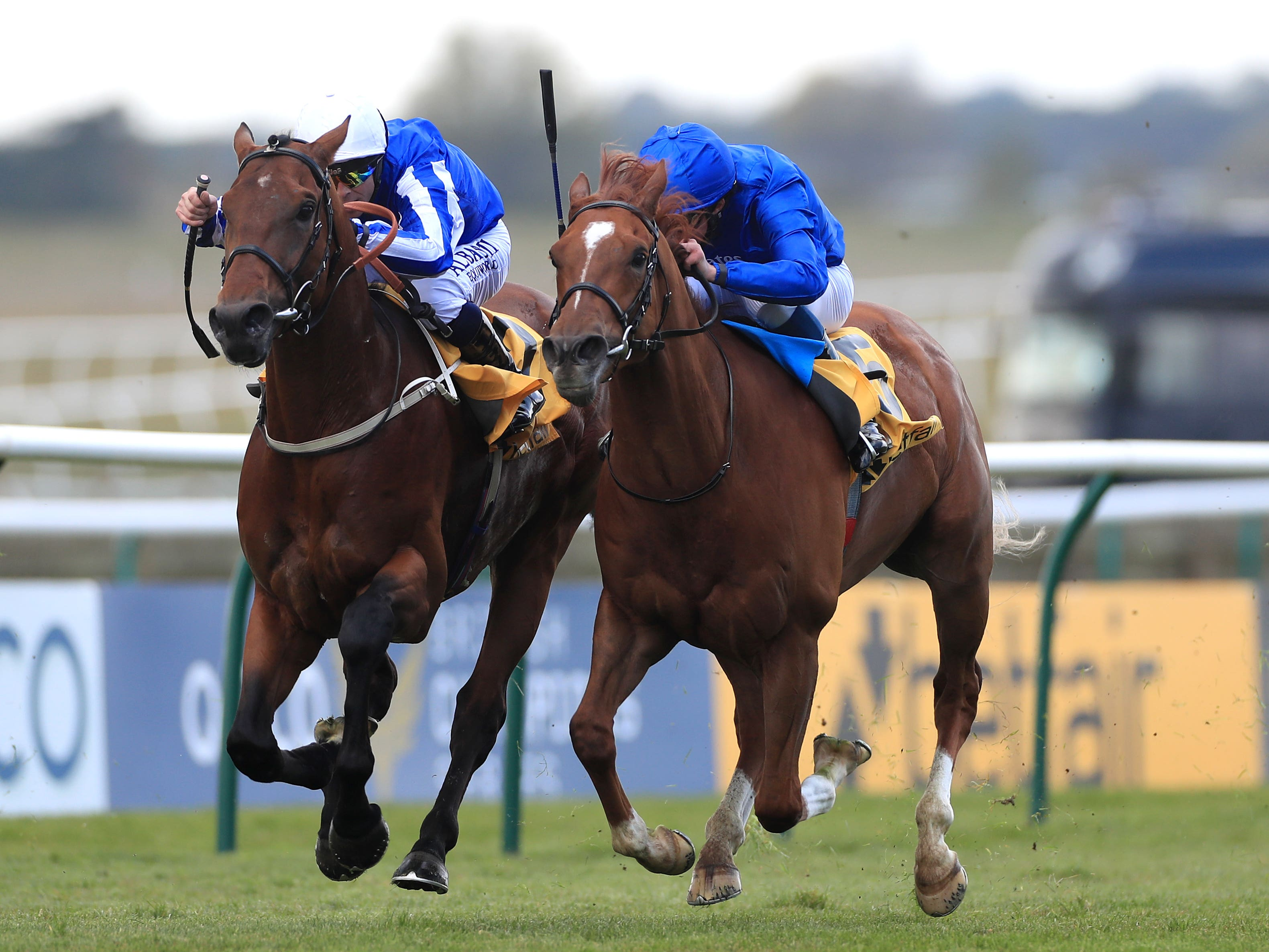 Zabeel Champion and Ben Curtis (left) get up to score at Newmarket (Mike Egerton/PA)
