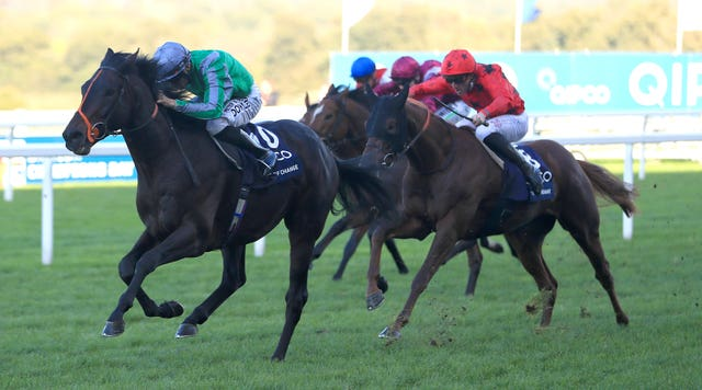 The Revenant (red) chases home King Of Change in last year's Champion Stakes