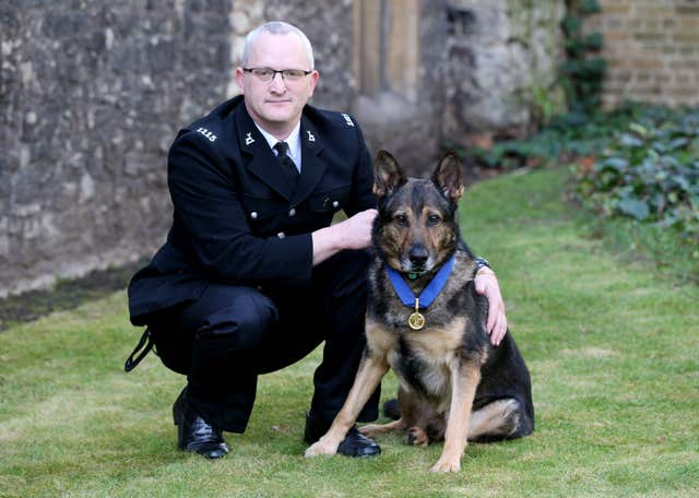 Dave Wardell with Finn and his PDSA Gold Medal