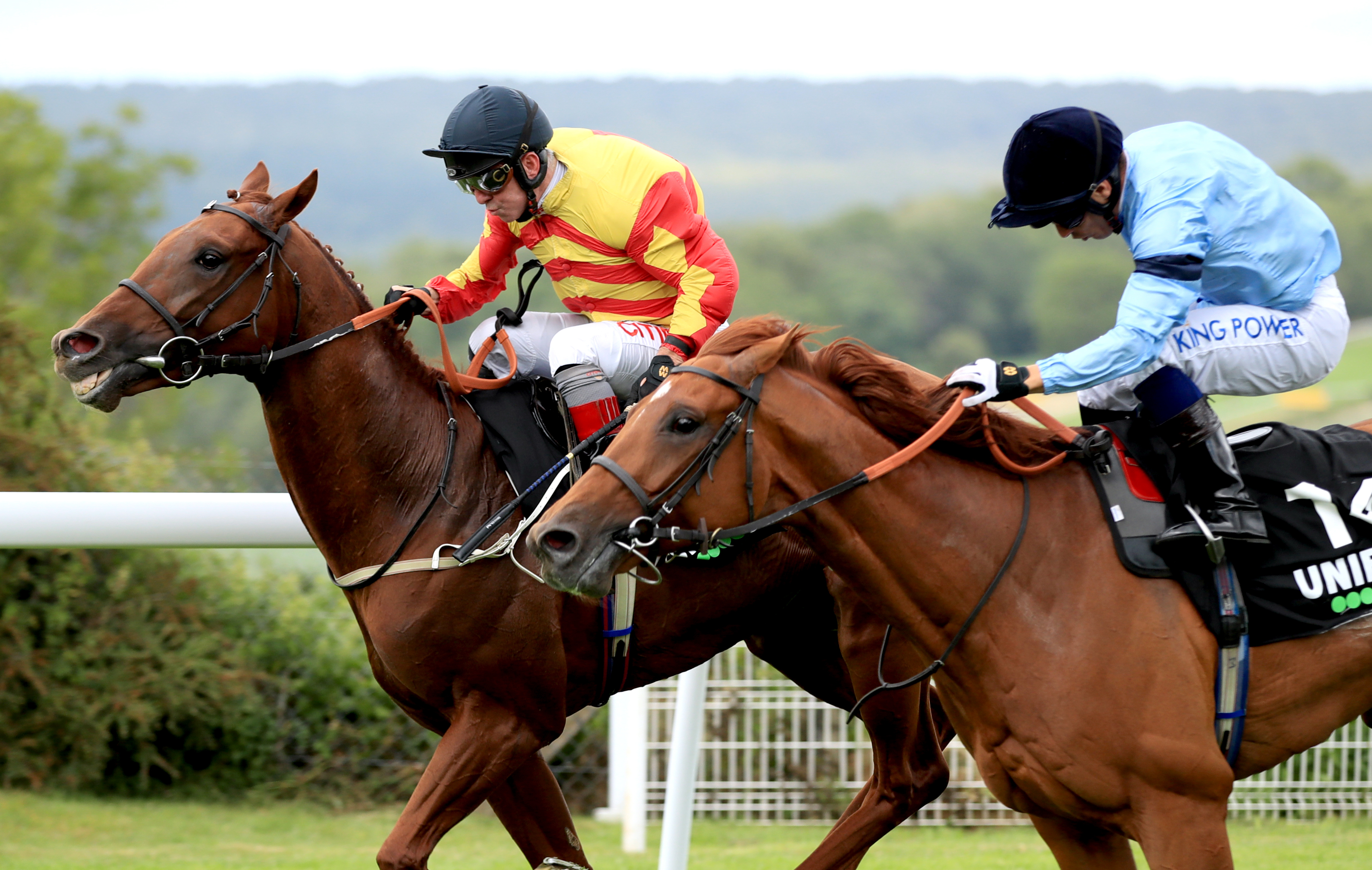 St Leger runner-up Sir Ron Priestley , yellow and orange silks, is unlikely to run again this season (Adam Davy/PA Images)