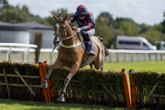 Chapmanshype takes a big hike in class in the bet365 Hurdle
