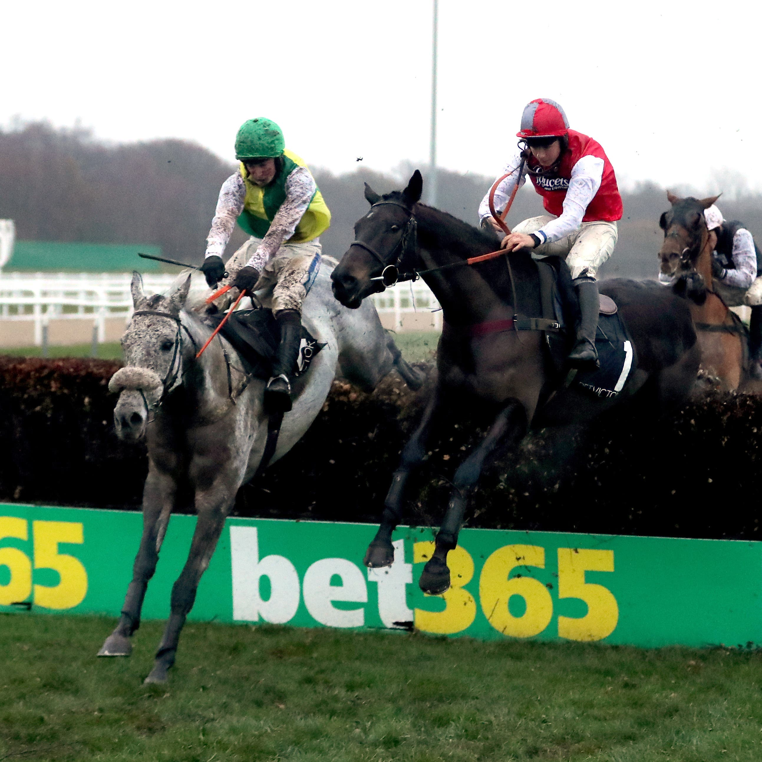 Lake View Lad (left) is to be given an entry in the Grand National