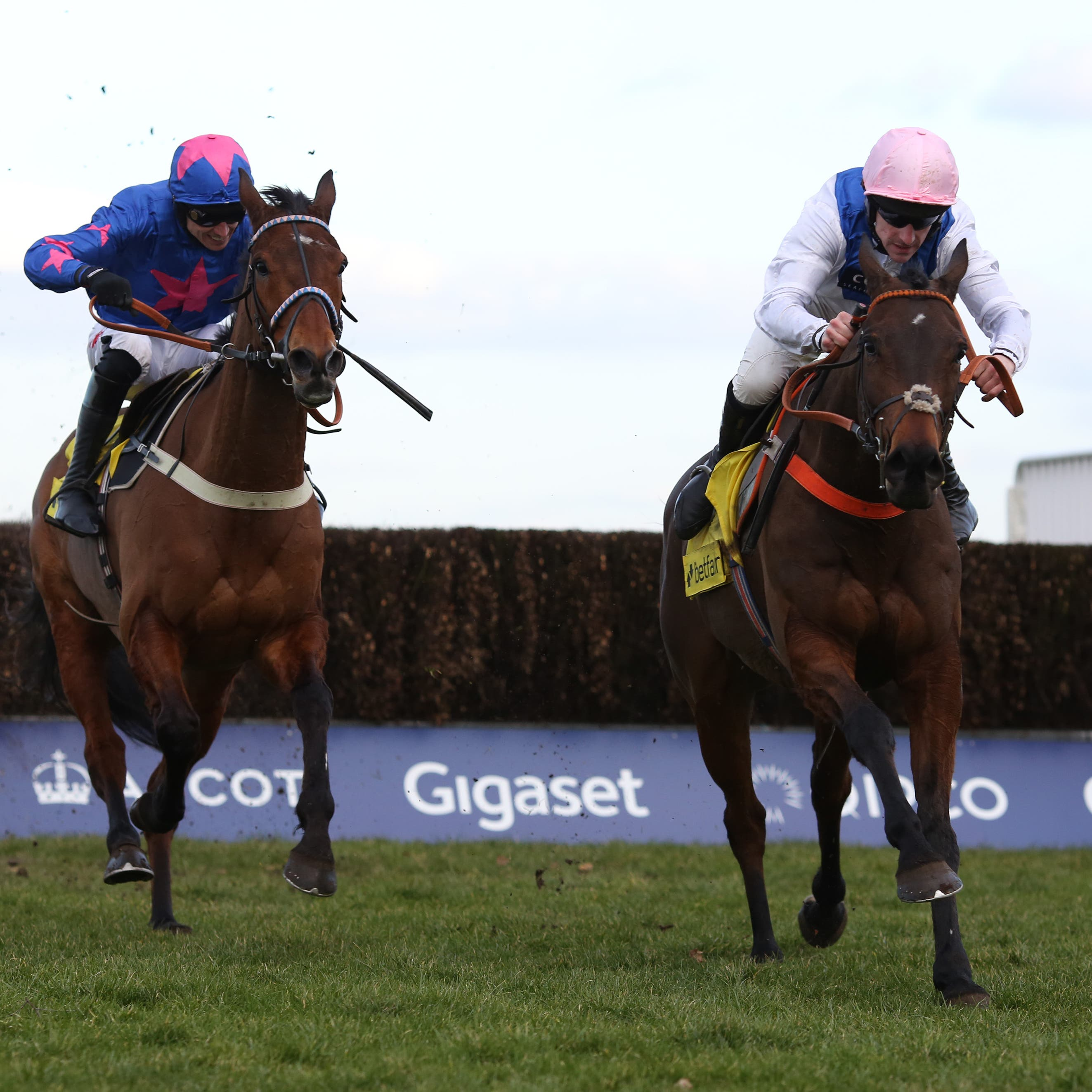 Waiting Patiently (right) sees off Cue Card to win the Ascot Chase