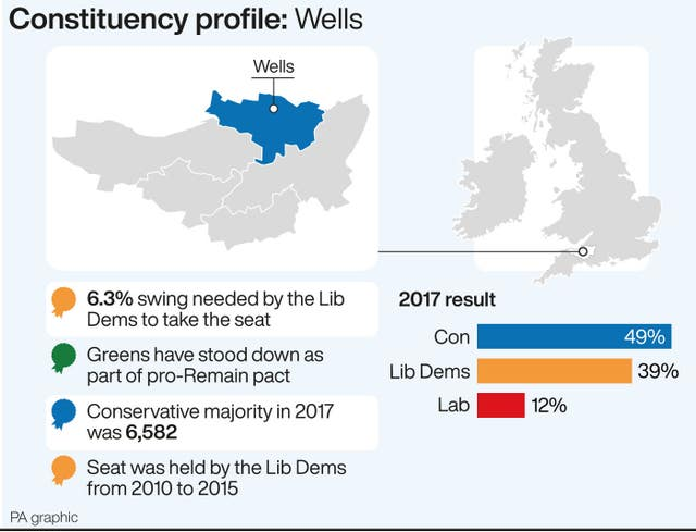 POLITICS Election Wells