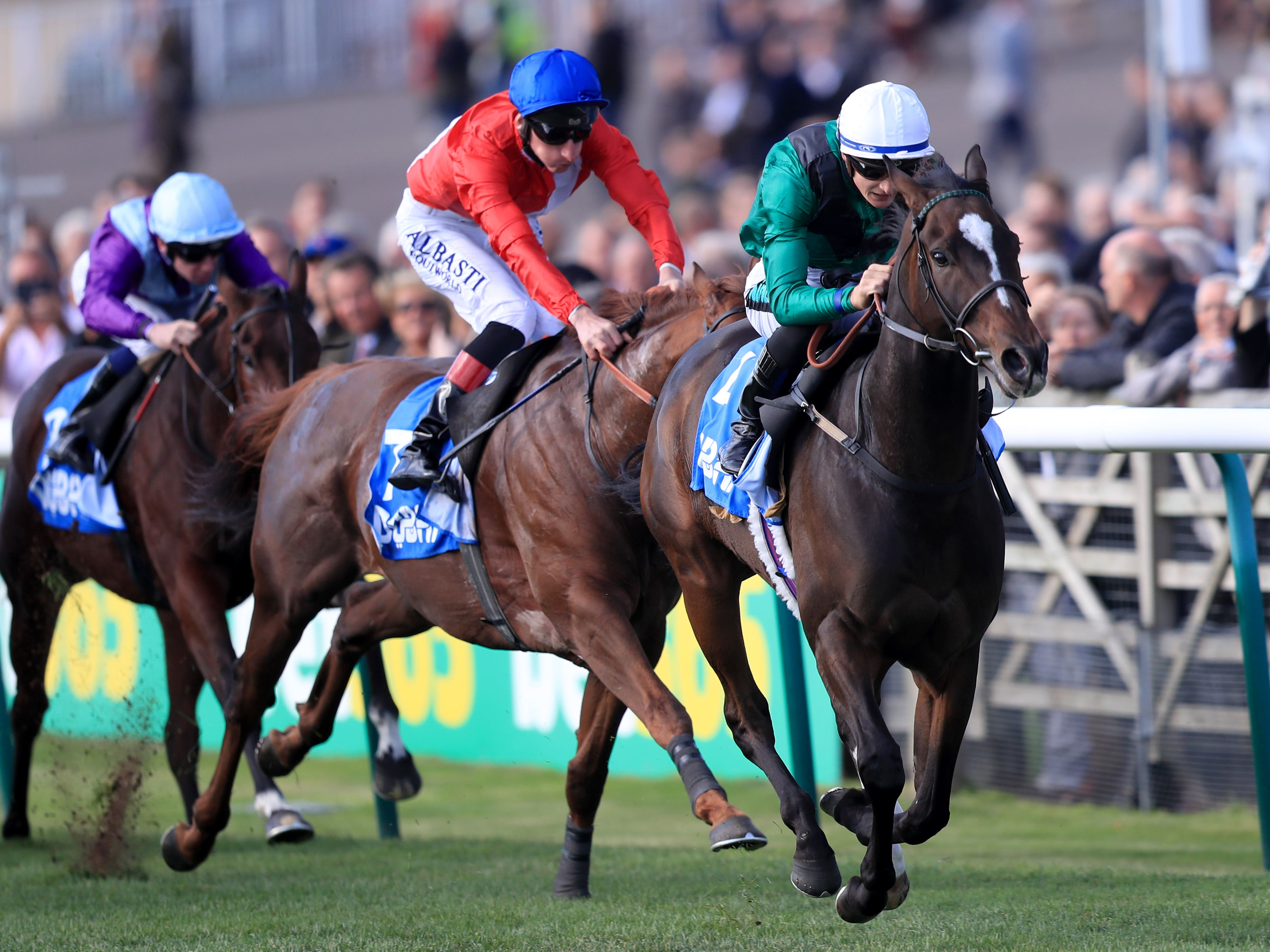 Limato will try to win Newmarket's Challenge Stakes for the third year running (Simon Cooper/PA)