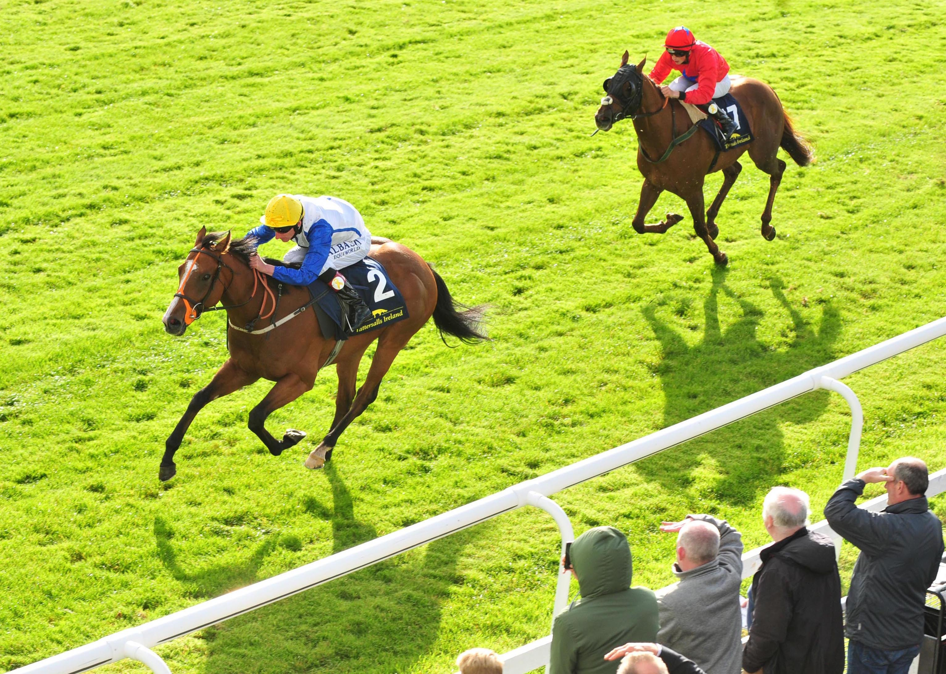 Snazzy Jazzy won a big sales race at the Curragh as a two-year-old