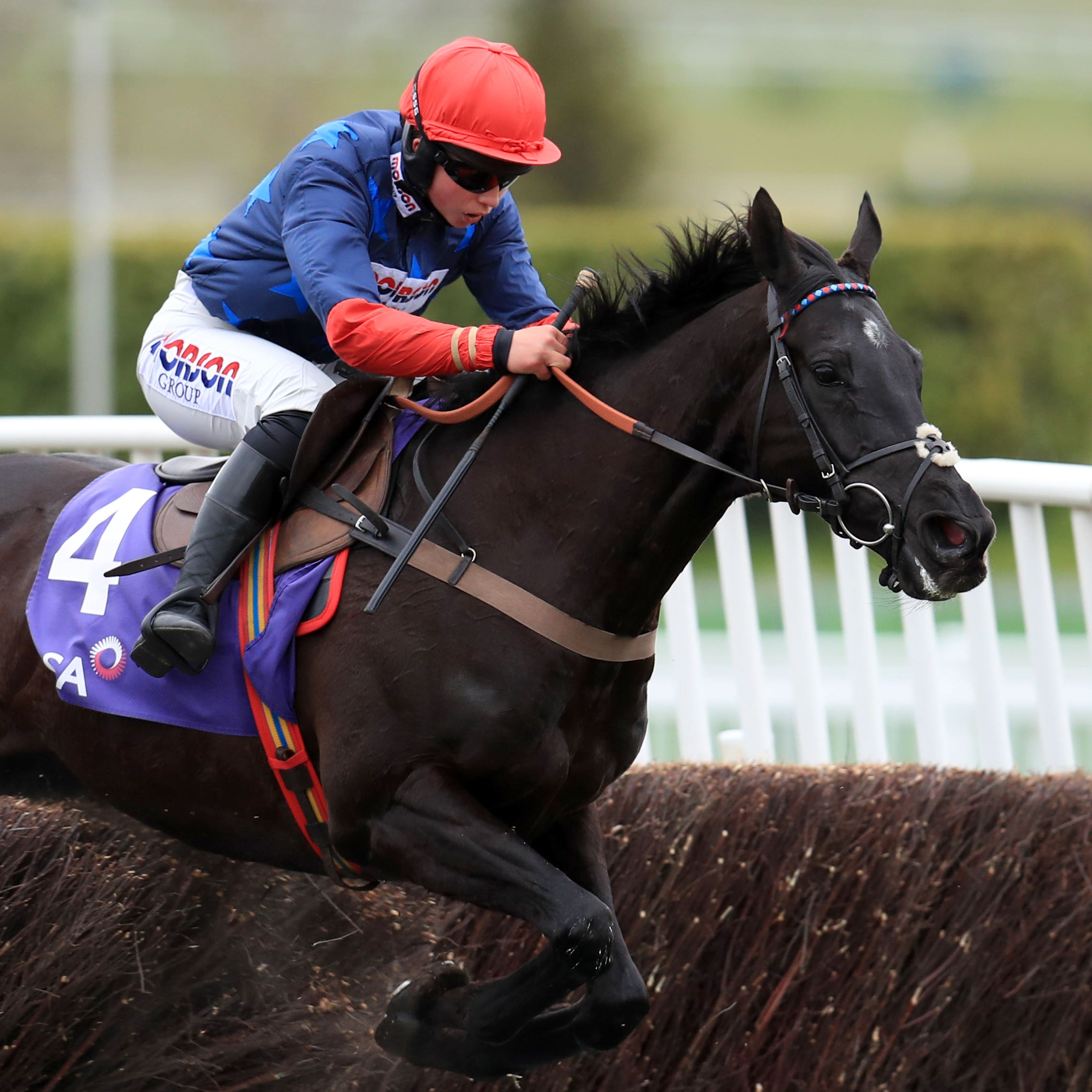 Black Corton will run in Wednesday's Galway Plate