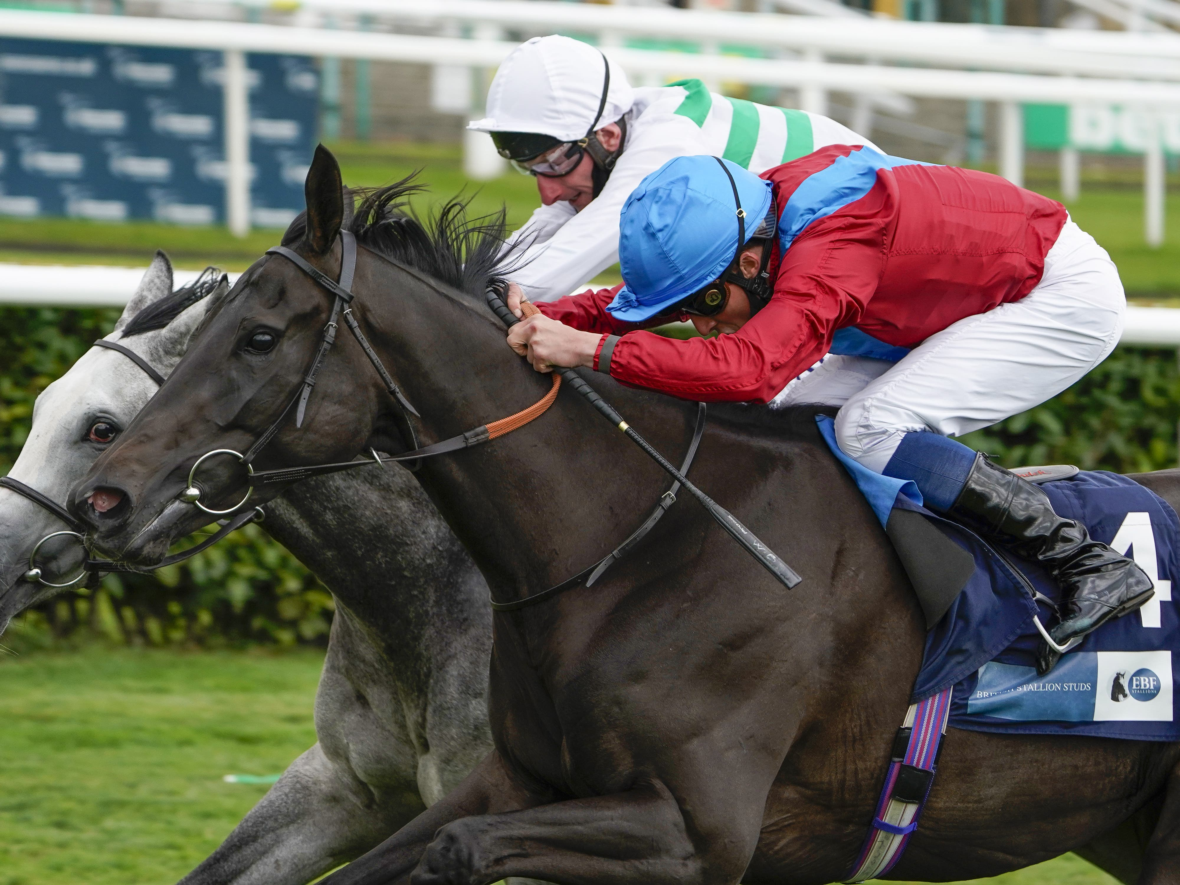 Sorrel (red) seen here winning at Doncaster (Alan Crowhurst/PA)