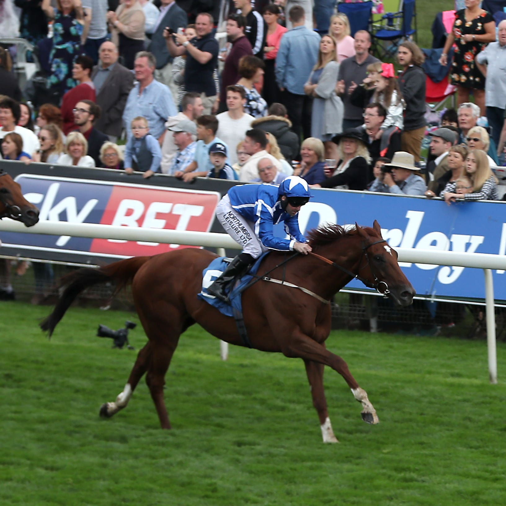 Flaming Spear is being aimed at all-weather championship finals day