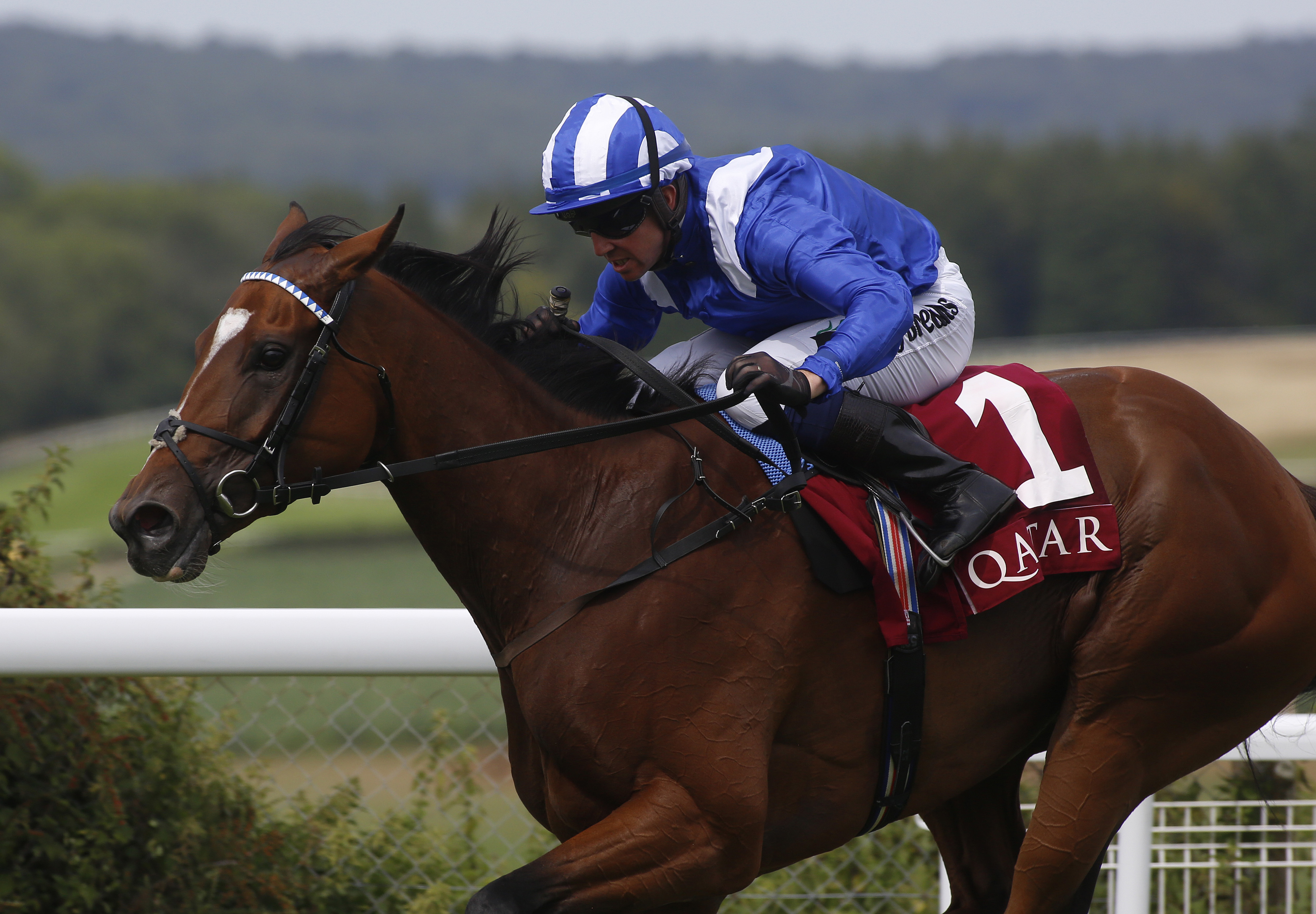 Enbihaar will bid for a third Group Two success in the DFS Park Hill Stakes at Doncaster (Julian Herbert/PA Images)